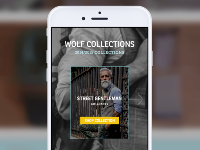 Wolf Collections by Florin Diaconu