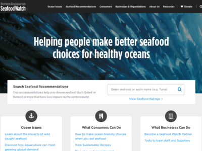 Seafood Watch Homepage Redesign by Tiffany Enriquez