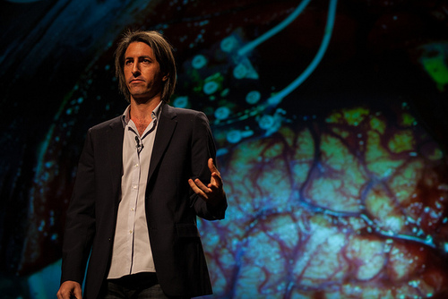 Moran Cerf: from hacking into banks to hacking into brains
