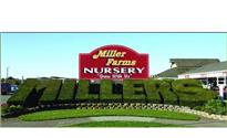 Photo: miller farms nursery 1.JPG