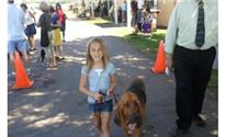 Photo: obedience trained bloodhound.jpg
