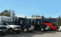 Photo: web buses.jpg