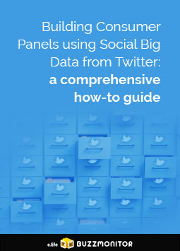 Building Consumer Panels using Social Big Data from Twitter: A comprehensive how-to guide