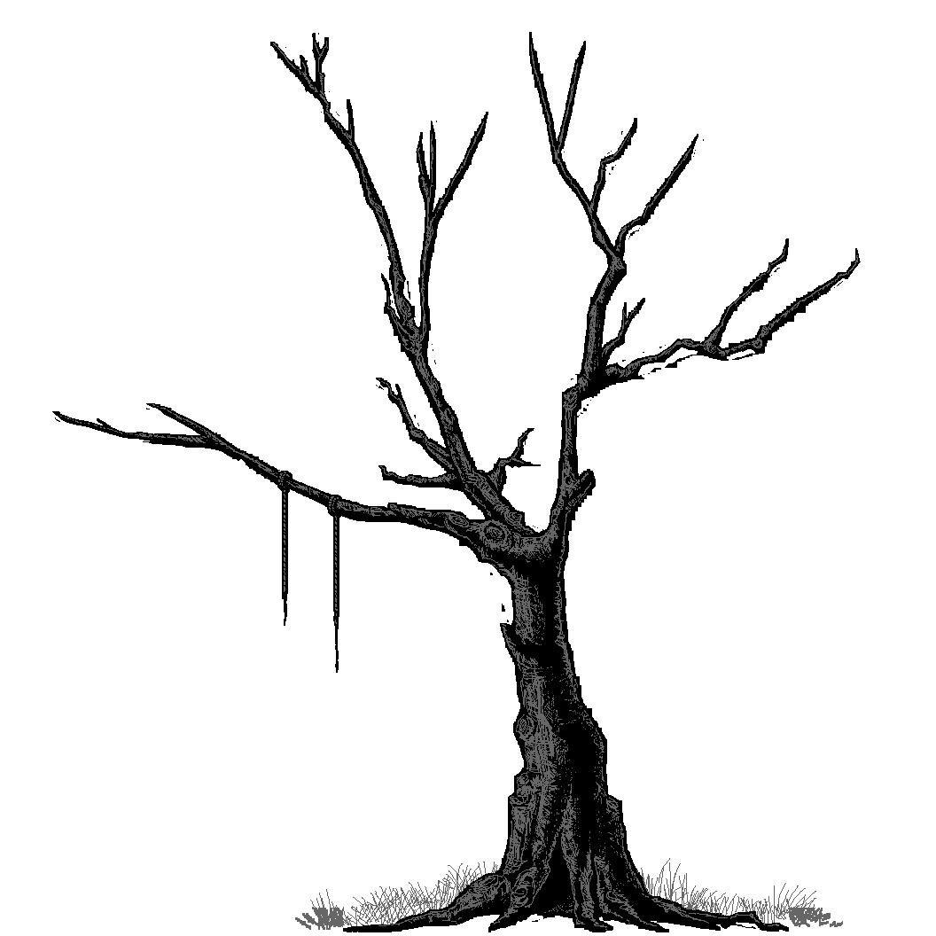 Spr_treewitch