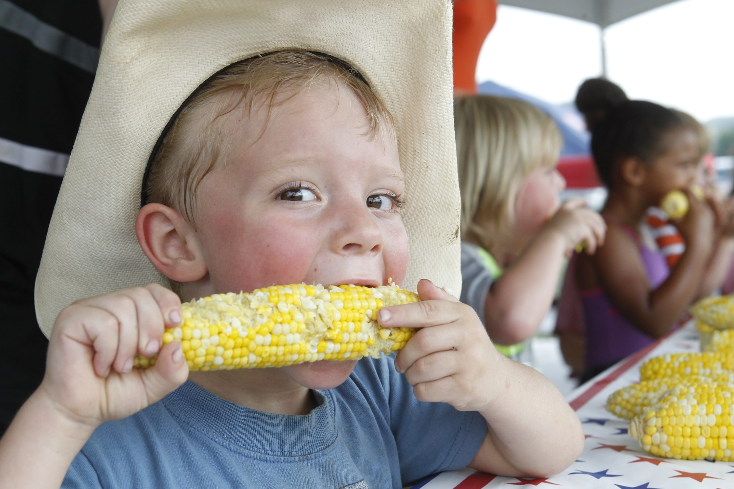 Corn and corn-eating contests will once again be the focus of the 50th annual Eden Corn Festival, starting today.