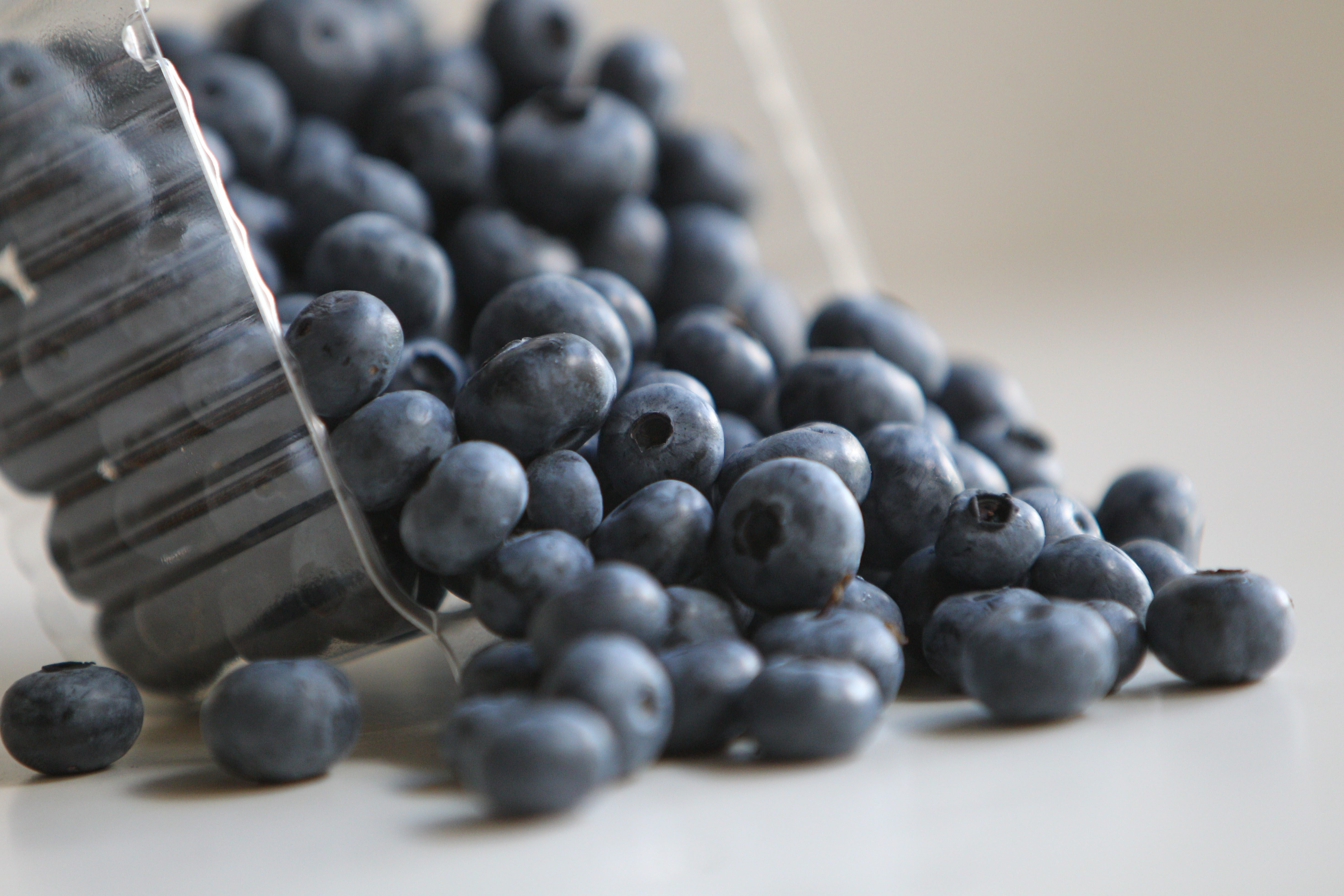 What's not to love about blueberries? They are easy to pick, a cinch to freeze – and they're good for you.
