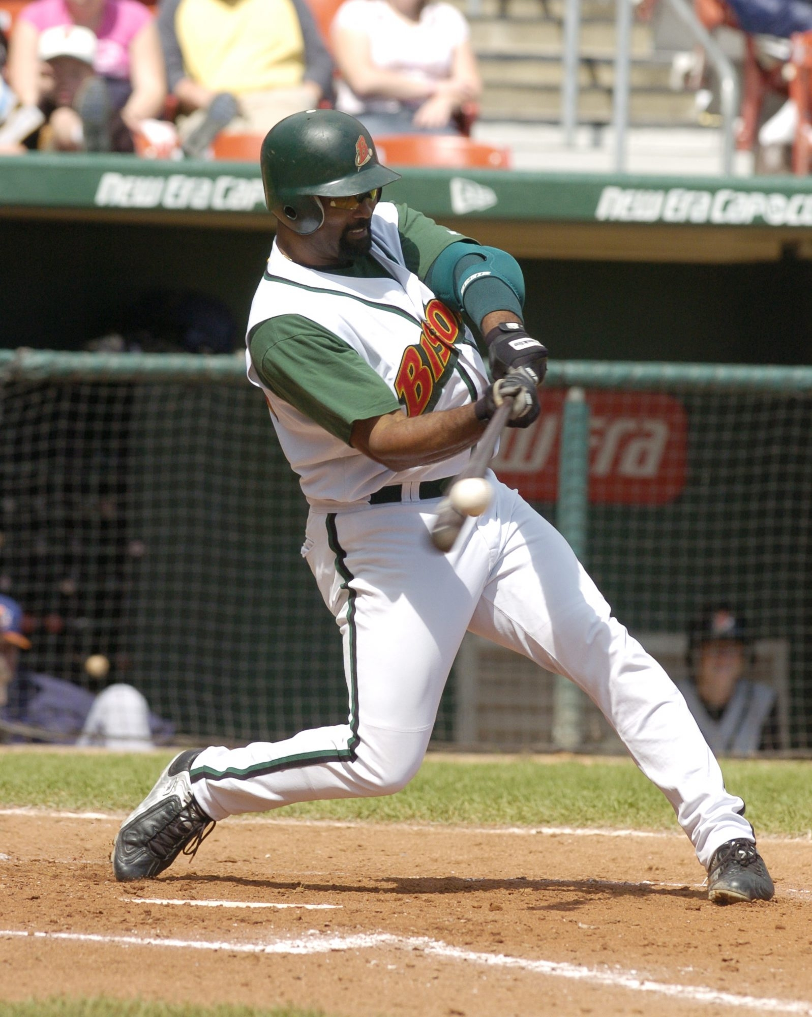 Ernie Young led the Bisons  with 27 home runs  in 2004.