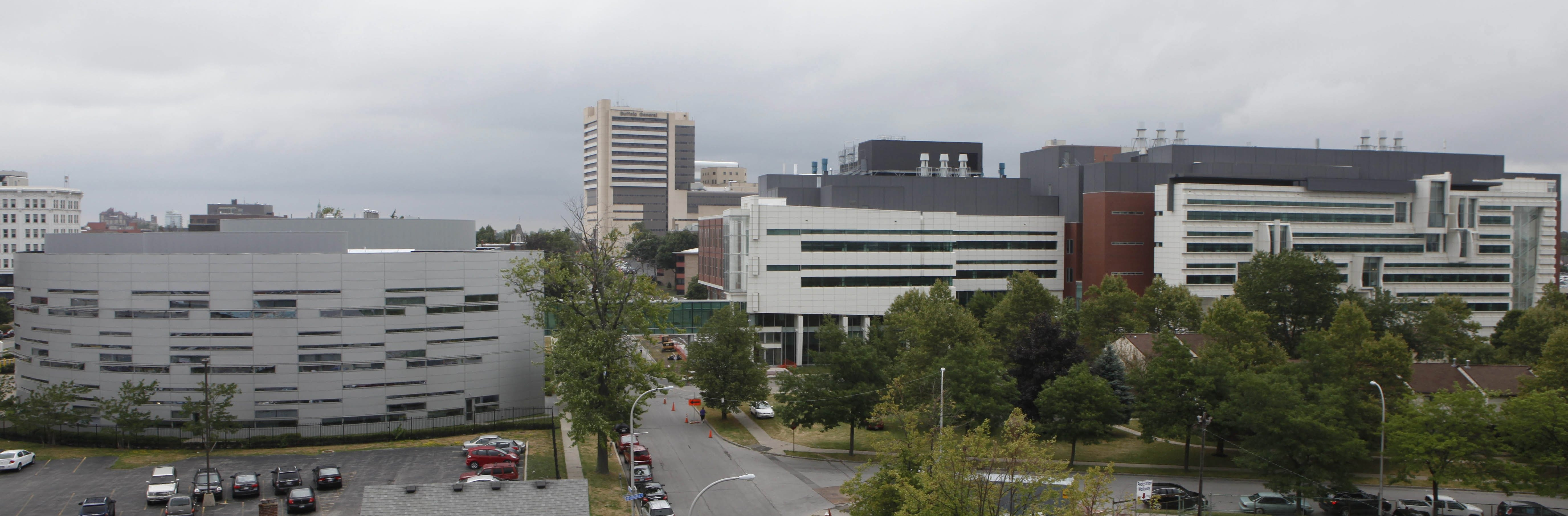 """The Buffalo Niagara Medical Campus is helping to revive Buffalo's economy. In almost every successful city, universities and medical centers – """"eds and meds"""" – are bedrock institutions."""