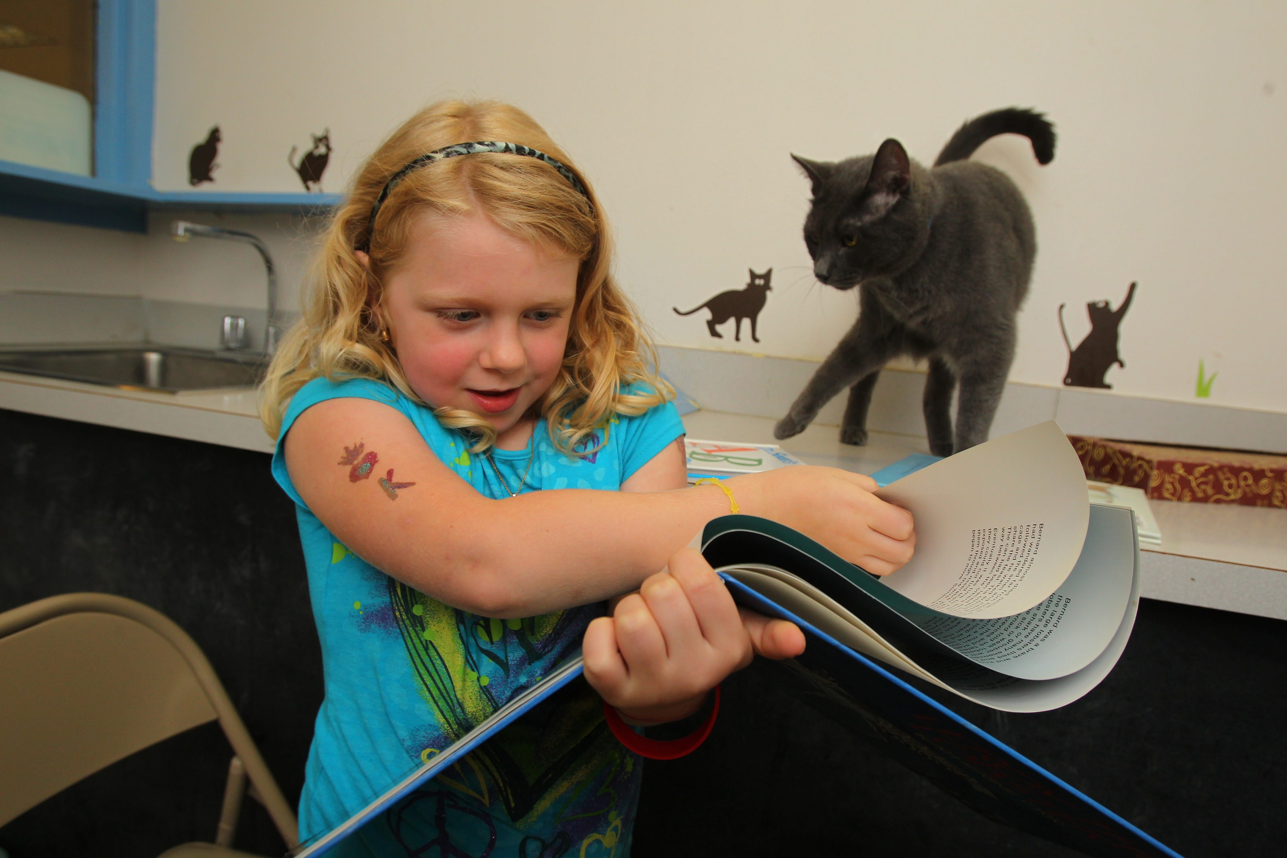 Kadence Richard, 5, of Cheektowaga, reads a storybook to a cat at the SPCA shelter in the Town of Tonawanda.