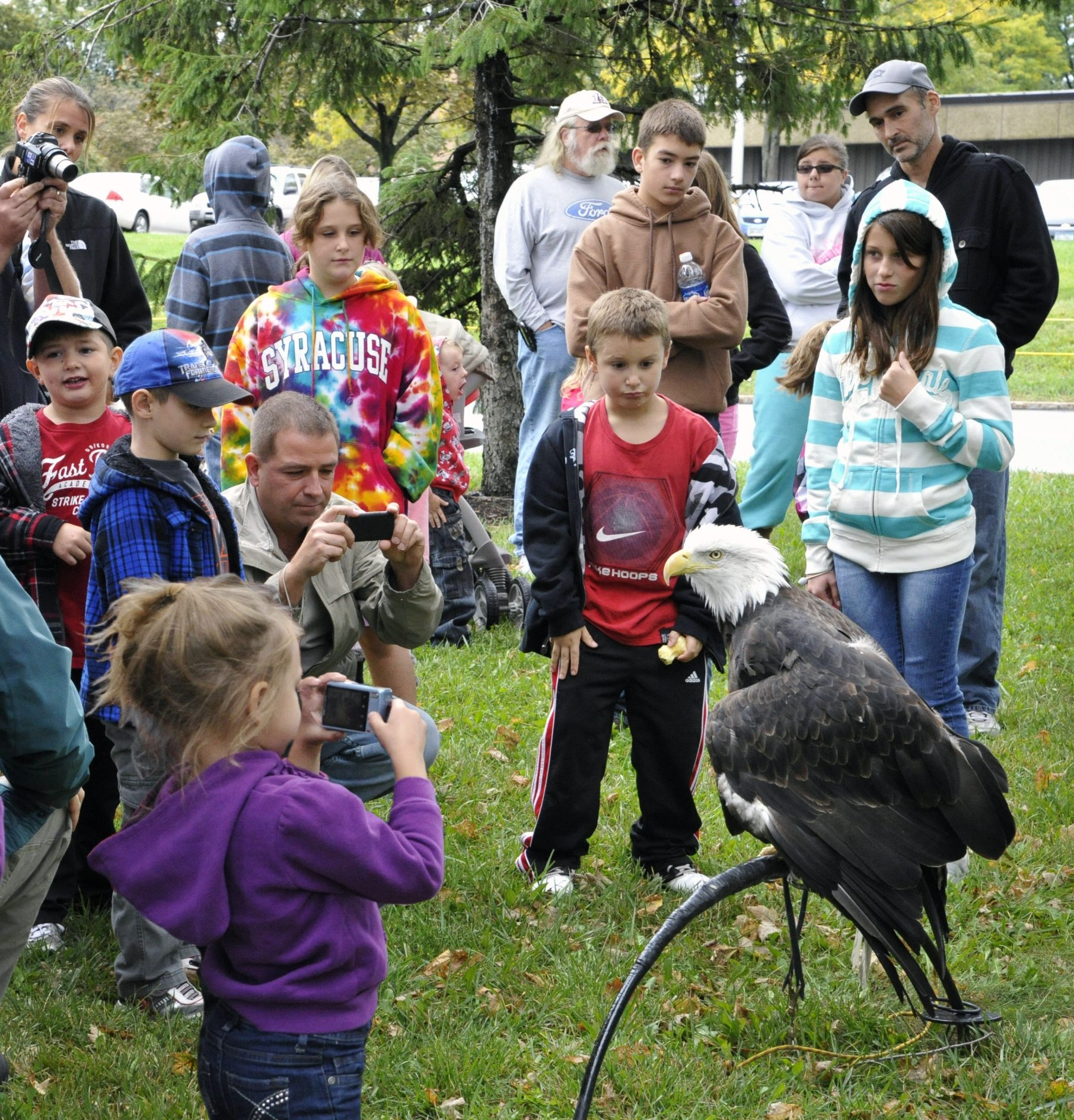 Liberty the bald eagle, viewed here by youngsters, is a feature of the New York Power Authority's 28th Wildlife Festival next weekend along with other raptors such as a screech owl, peregrine falcon and red-tail hawk.