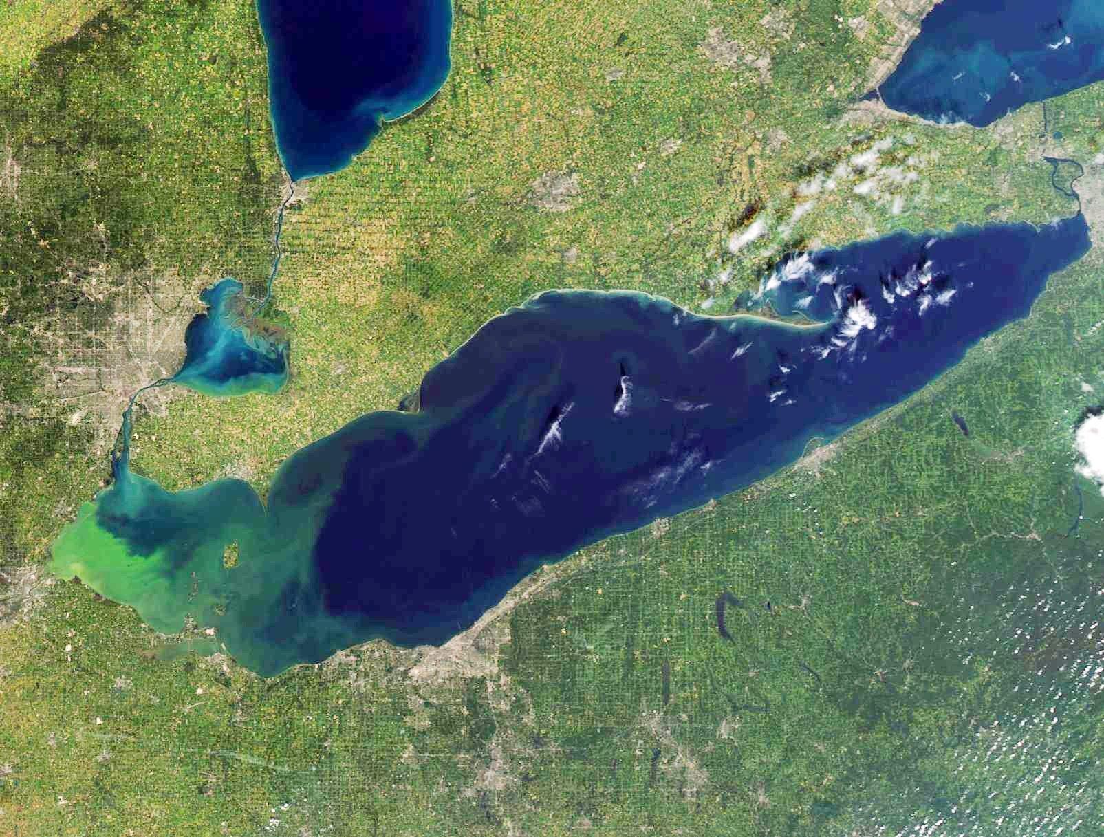 Satellite image of Lake Erie from September 10 shows toxic algae bloom.