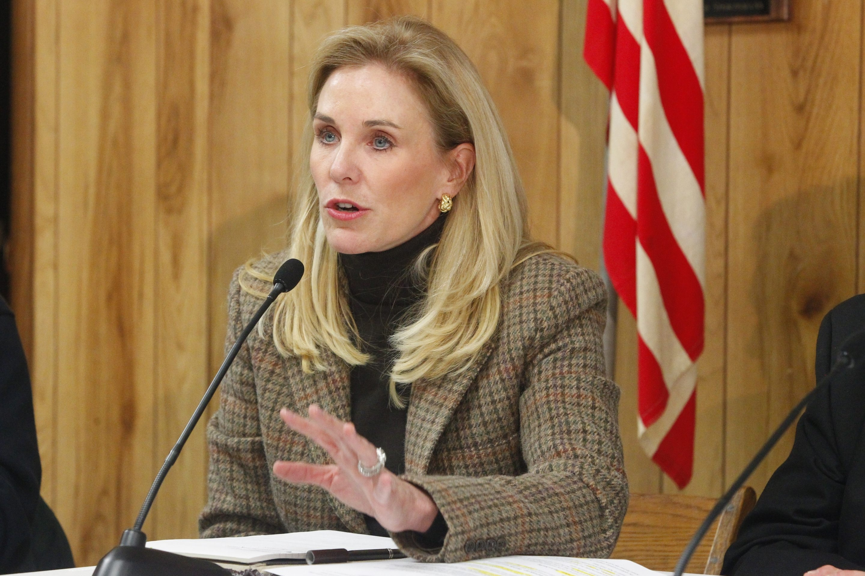 Assemblywoman Jane L. Corwin, R-Clarence, has household net worth estimated at $40.1 million to $74.6 million, analysis shows.