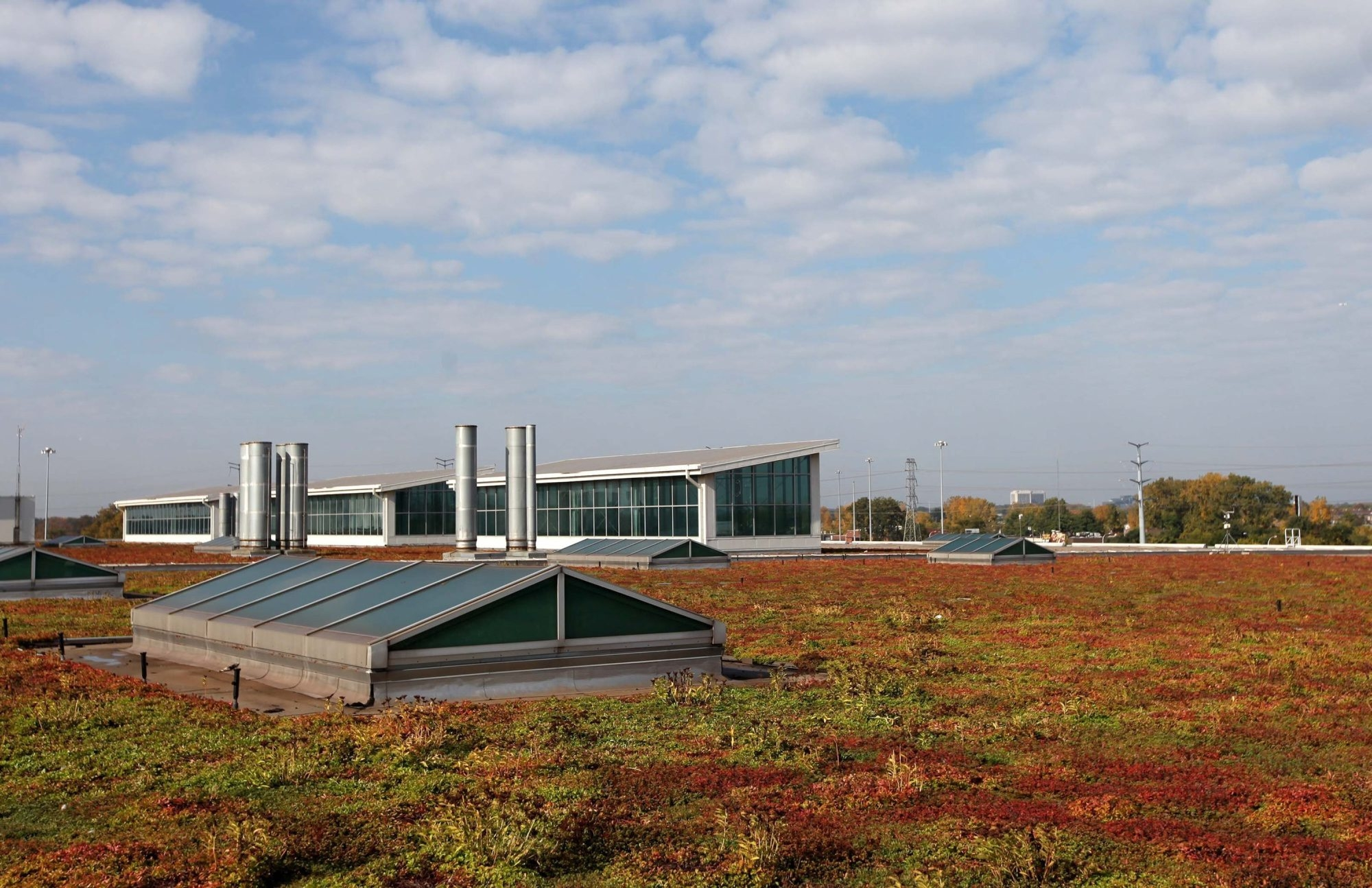 Skylights and other parts of the structure rise through the rooftop garden on the Ford Dearborn Truck Pant in Dearborn, Mich. The living roof has been on the building for 10 years and covers 10.4 acres.
