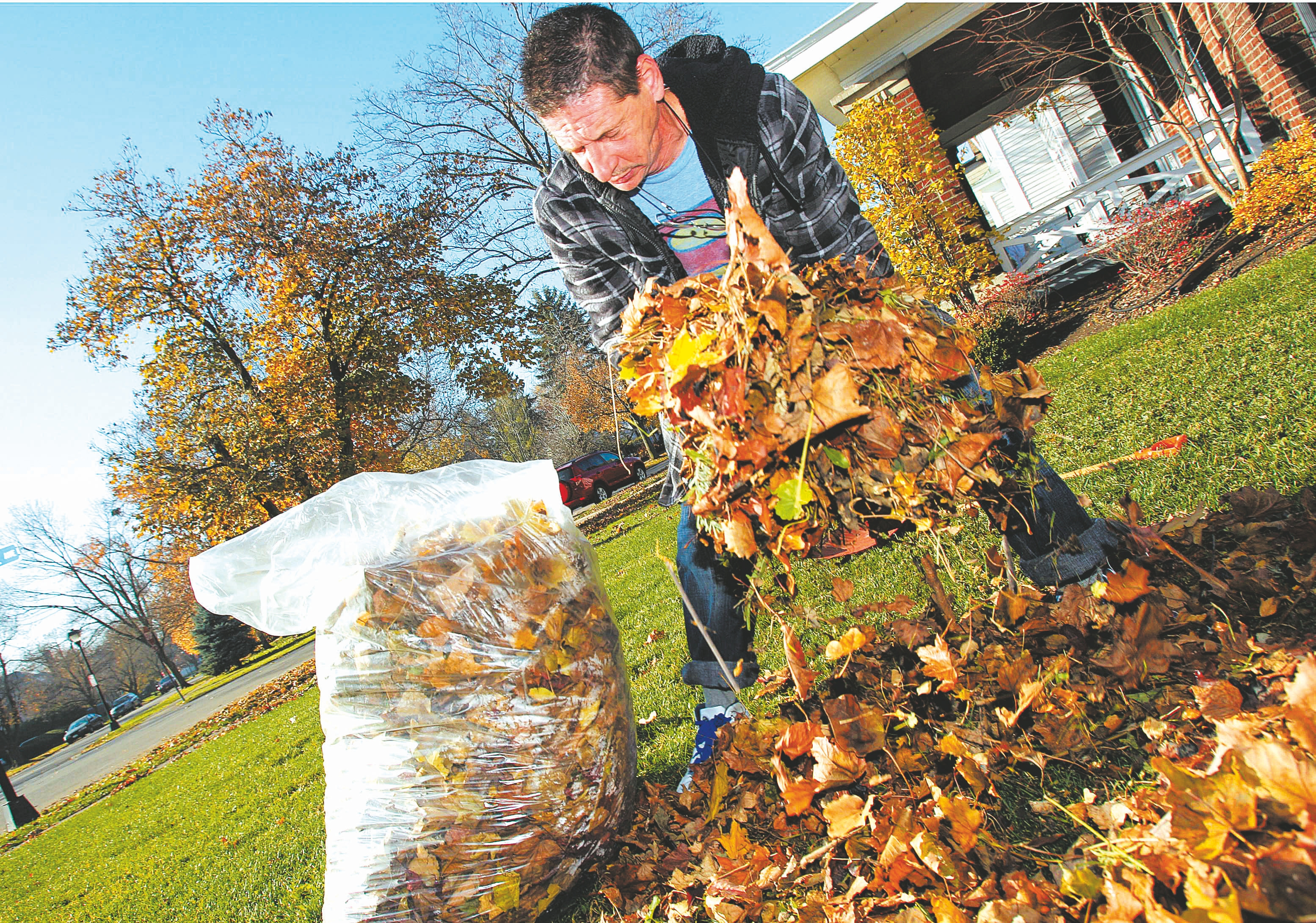 Use a sturdy, comfortable rake for leaves, and be sure to wear gloves to prevent blisters if the handle isn't padded.