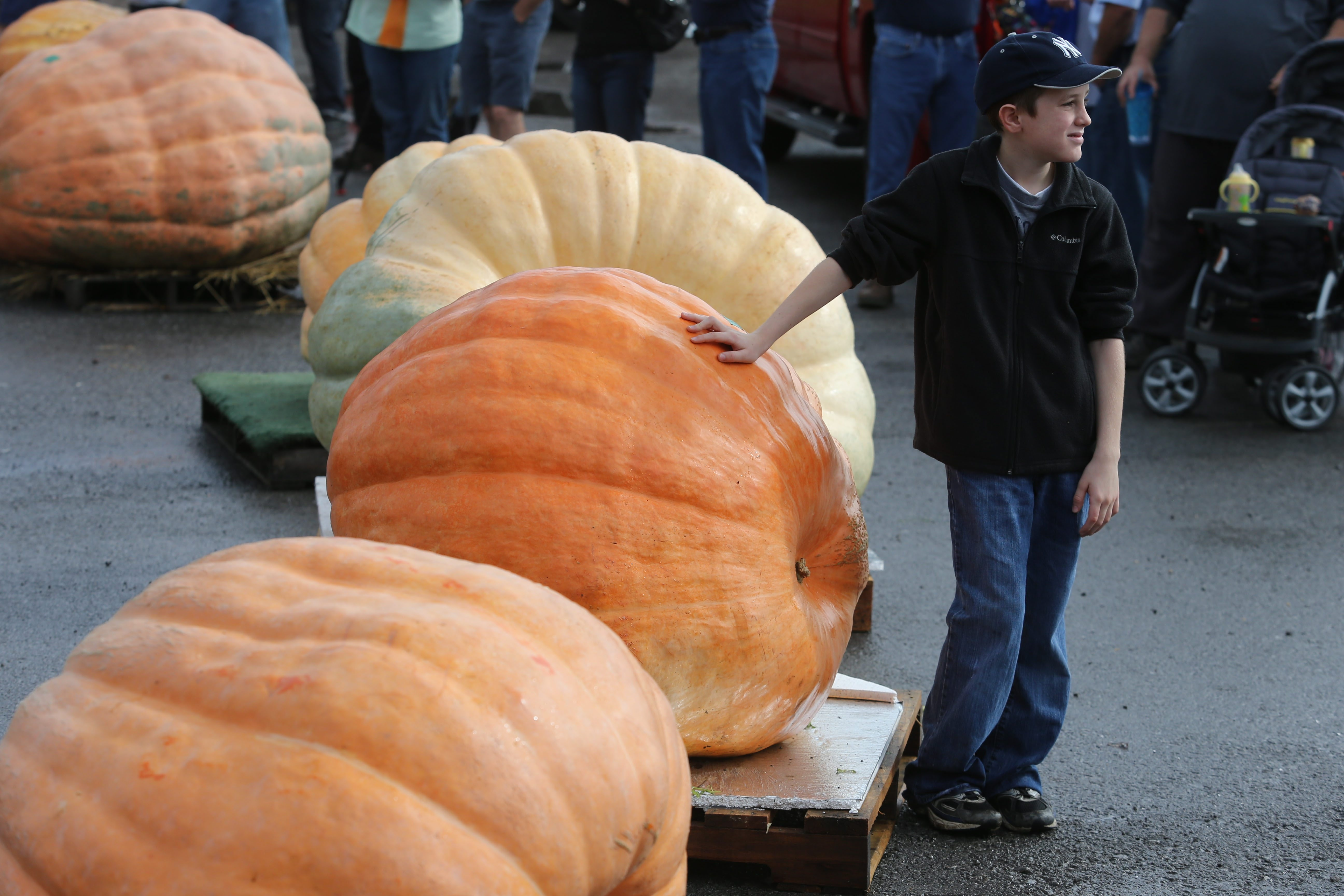 Jacob Drake, 10, of Wheatfield, rests a hand on his 574-pound pumpkin during the World Pumpkin Weigh-Off  on Sunday at the Great Pumpkin Farm in Clarence. The winning pumpkin weighed a whopping 1,552 pounds.