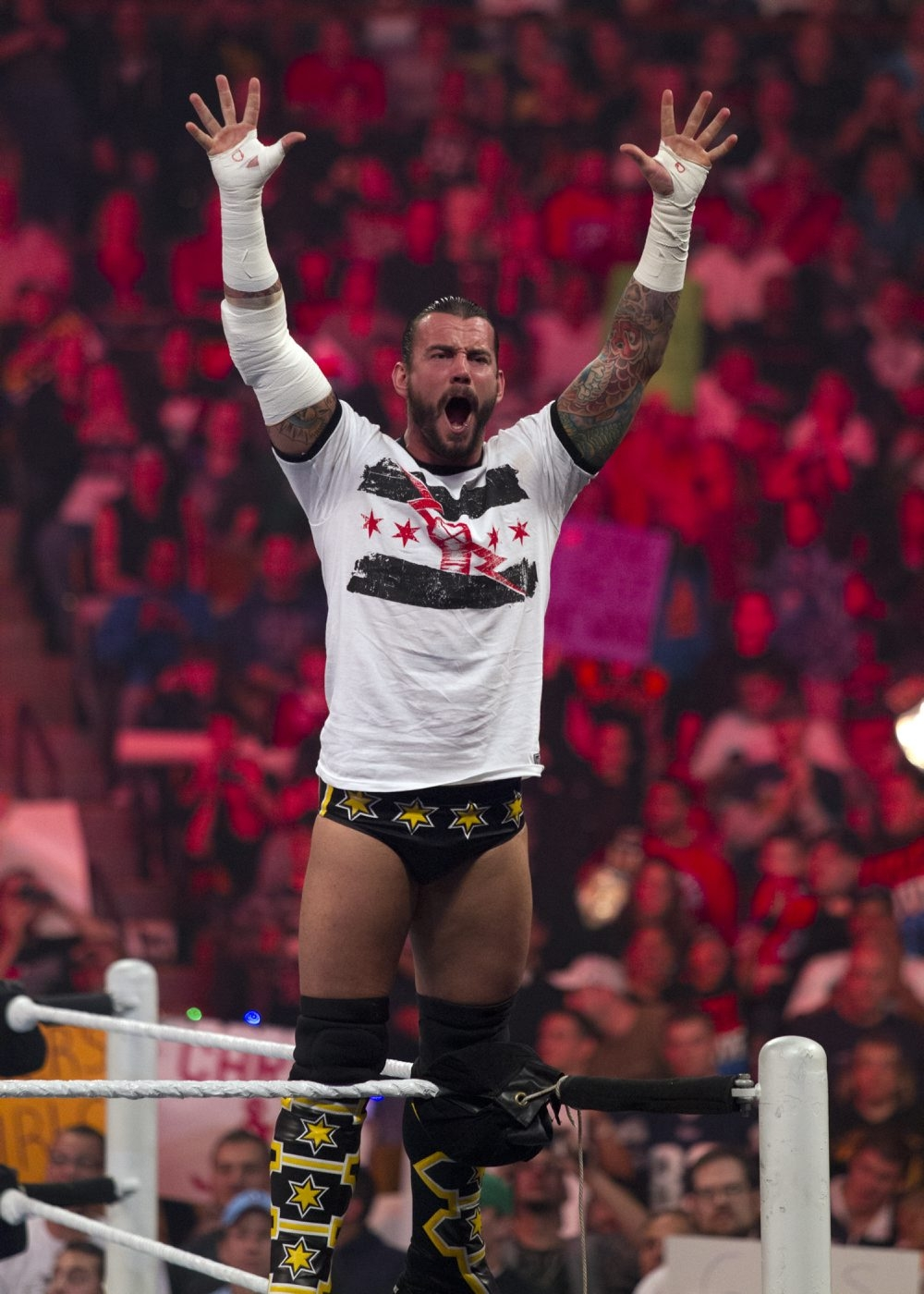CM Punk of the WWE