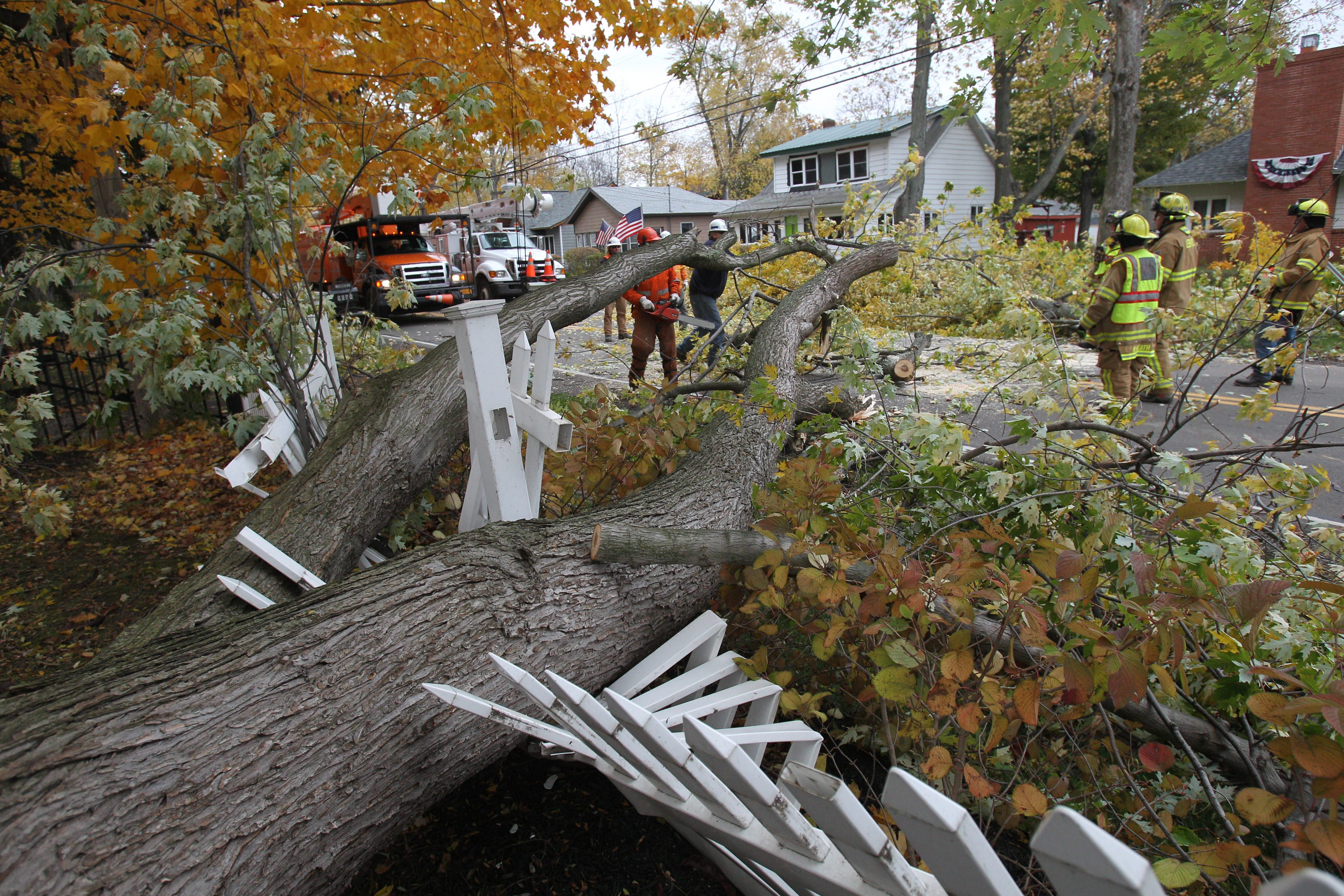 A tree-sized limb fell  across Lakeshore Road at Waterman Road in Evans Friday afternoon. The road was reopened in 30 minutes as the Lake Erie Beach Volunteer Fire Co. responded.