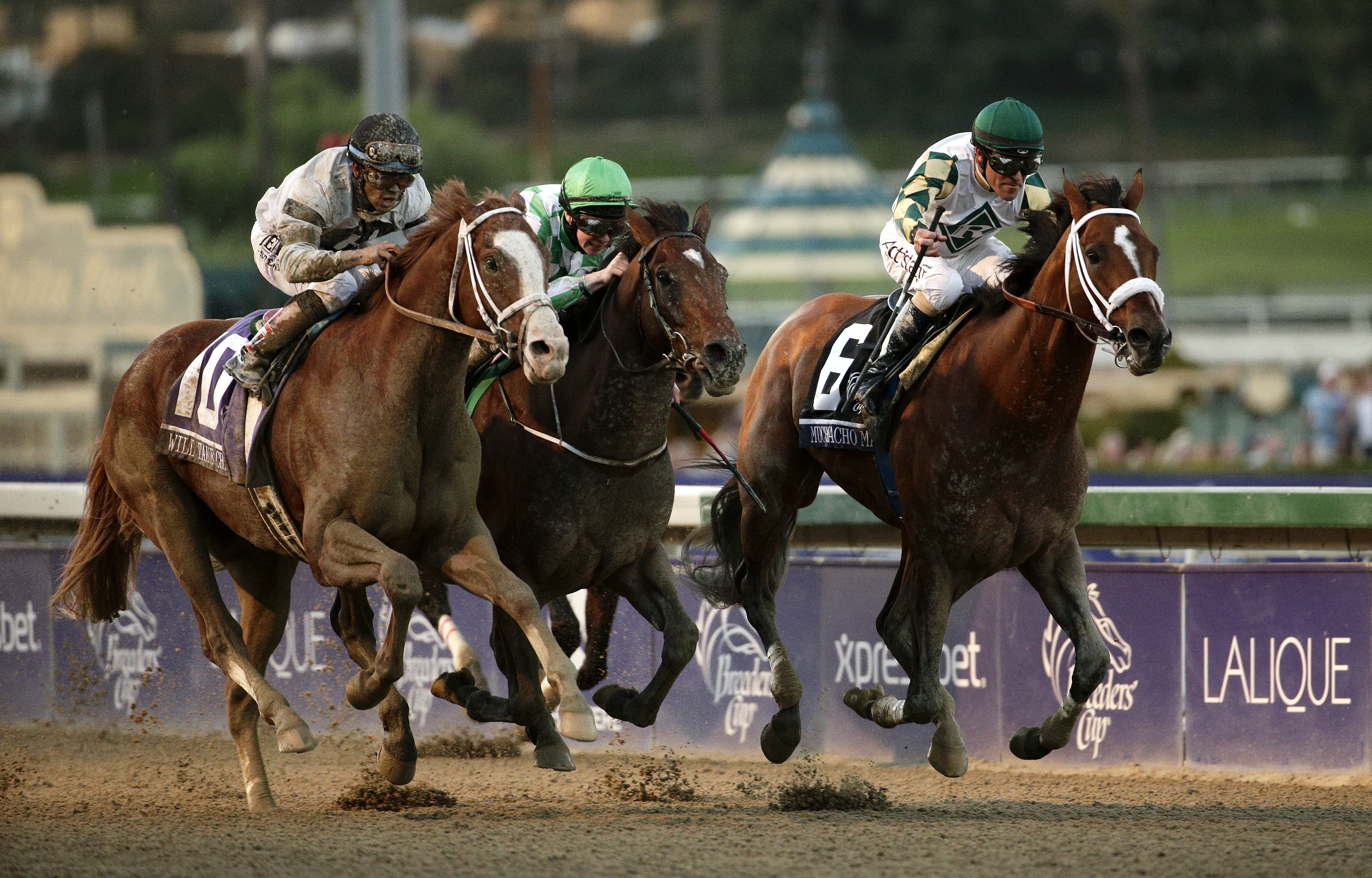 Jockey Gary Stevens, right, rides Mucho Macho Man to victory in the Breeders' Cup Classic.