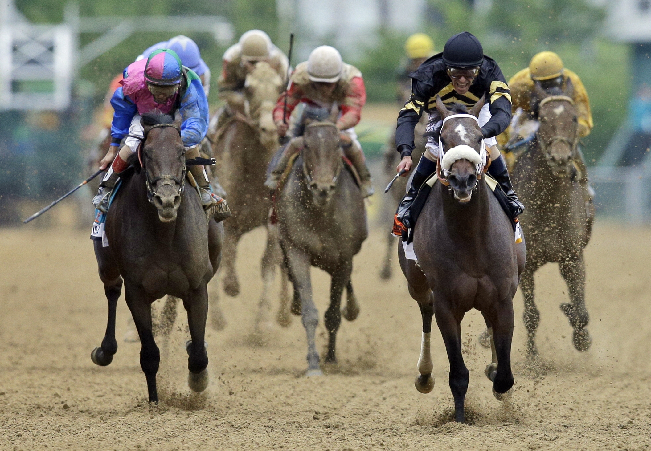 Jockey Gary Stevens came out of retirement at age 50 and rode Oxbow, second from right, to the finish line to win the 138th Preakness Stakes in May. Oxbow gave trainer D. Wayne Lukas his 14th Triple Crown win.
