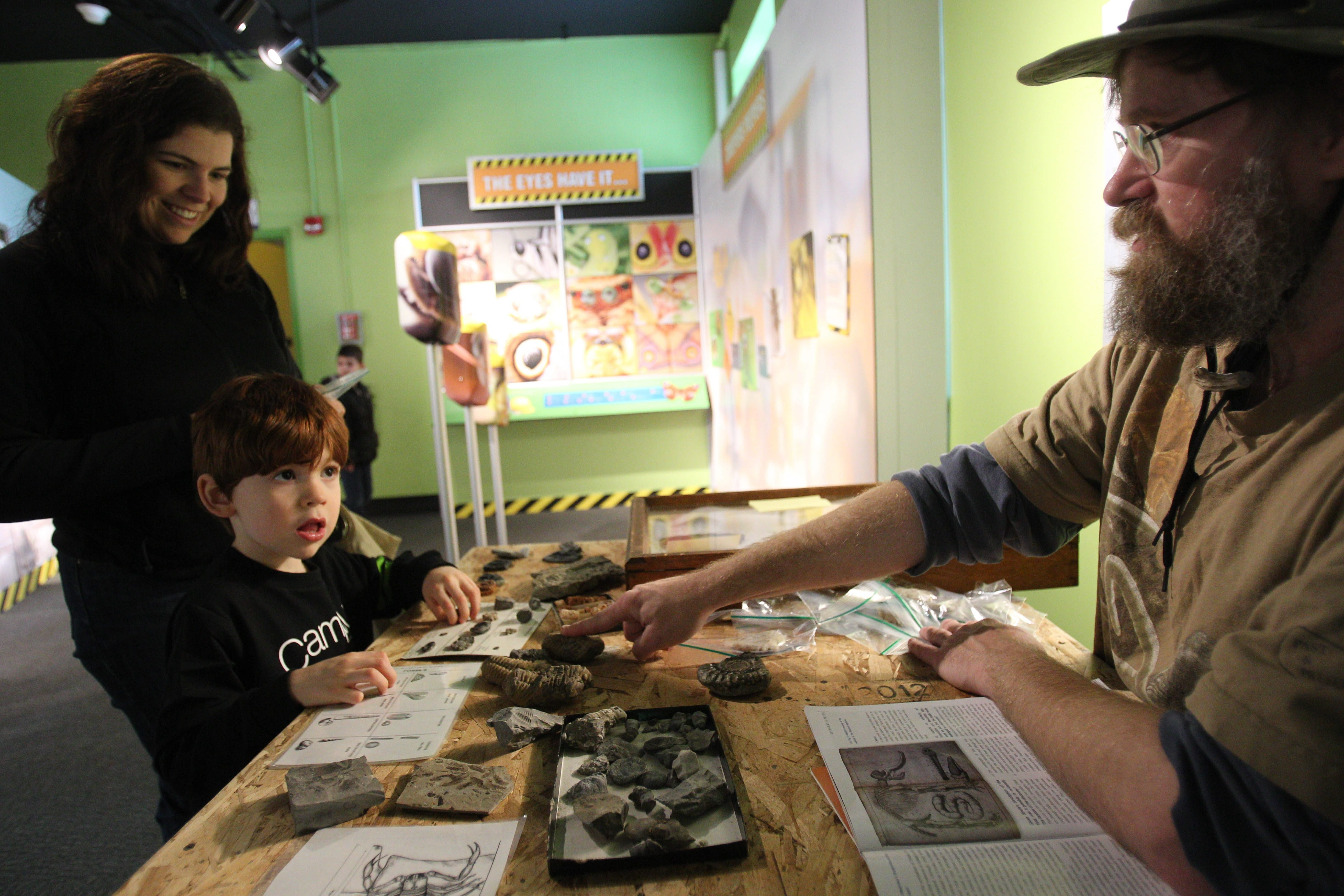 Brian Engler shows Ned Ortman and his mother fossils of insects and their ancient ancestors in the Museum of Science Bug Works studio.