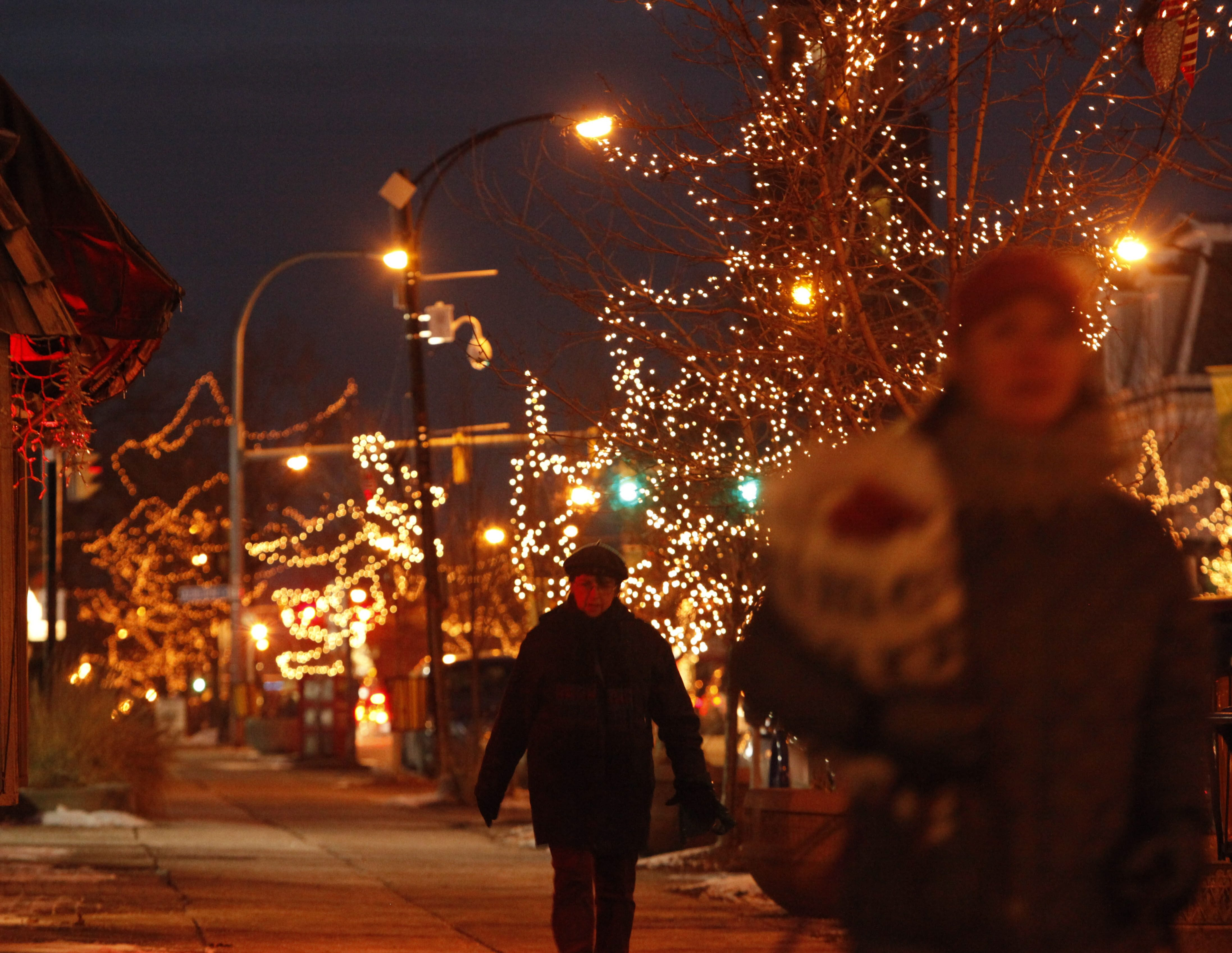 Misinformation led to reports that holiday lights would be taken down along Elmwood Avenue .