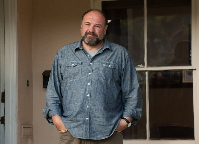"James Gandolfini's performance in ""Enough Said"" showed everyone what he might have done in the career he never had."