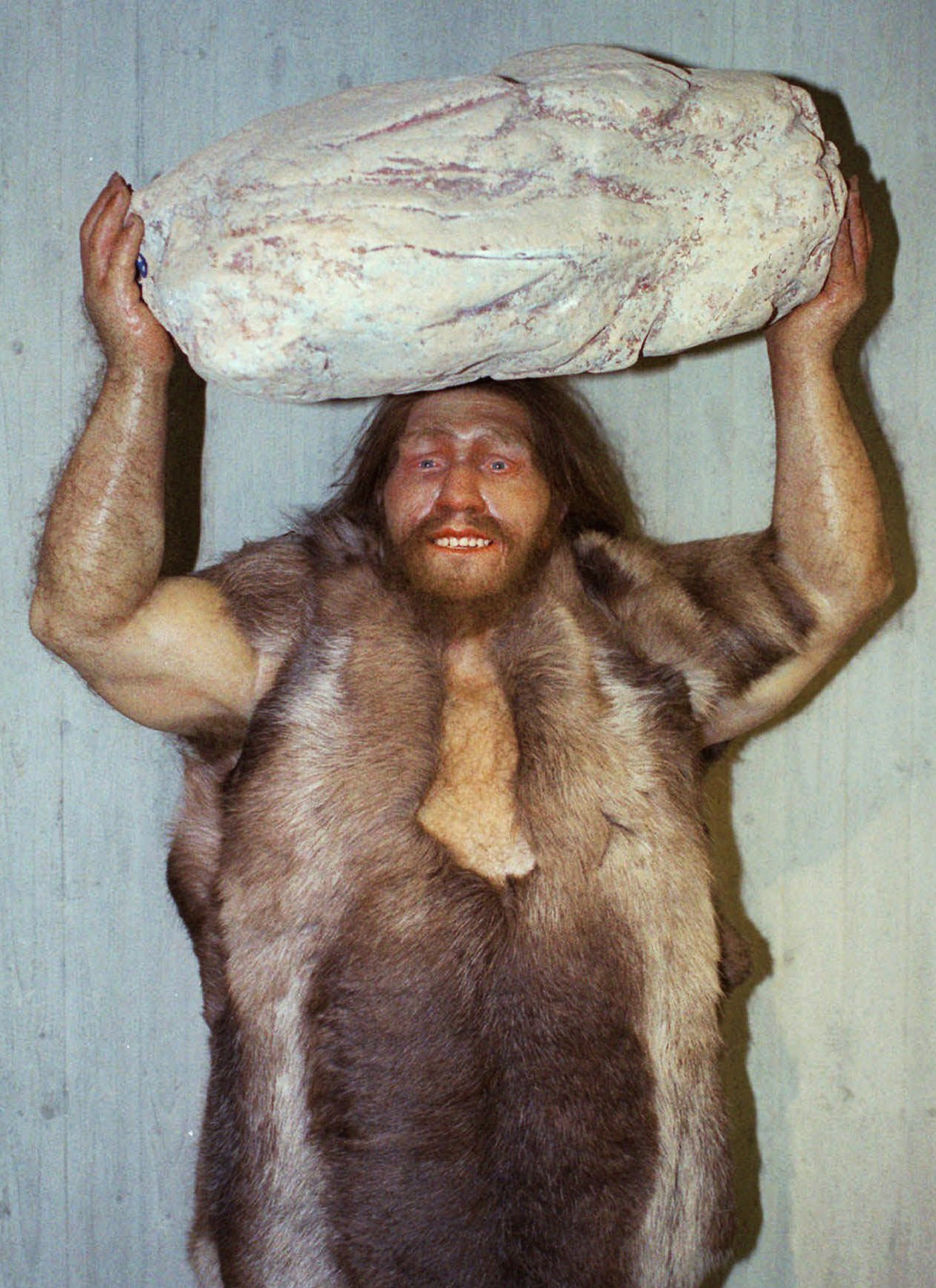 In this file photo, a replica of a Neanderthal man is displayed at the Neanderthal museum in Mettmann, western Germany.