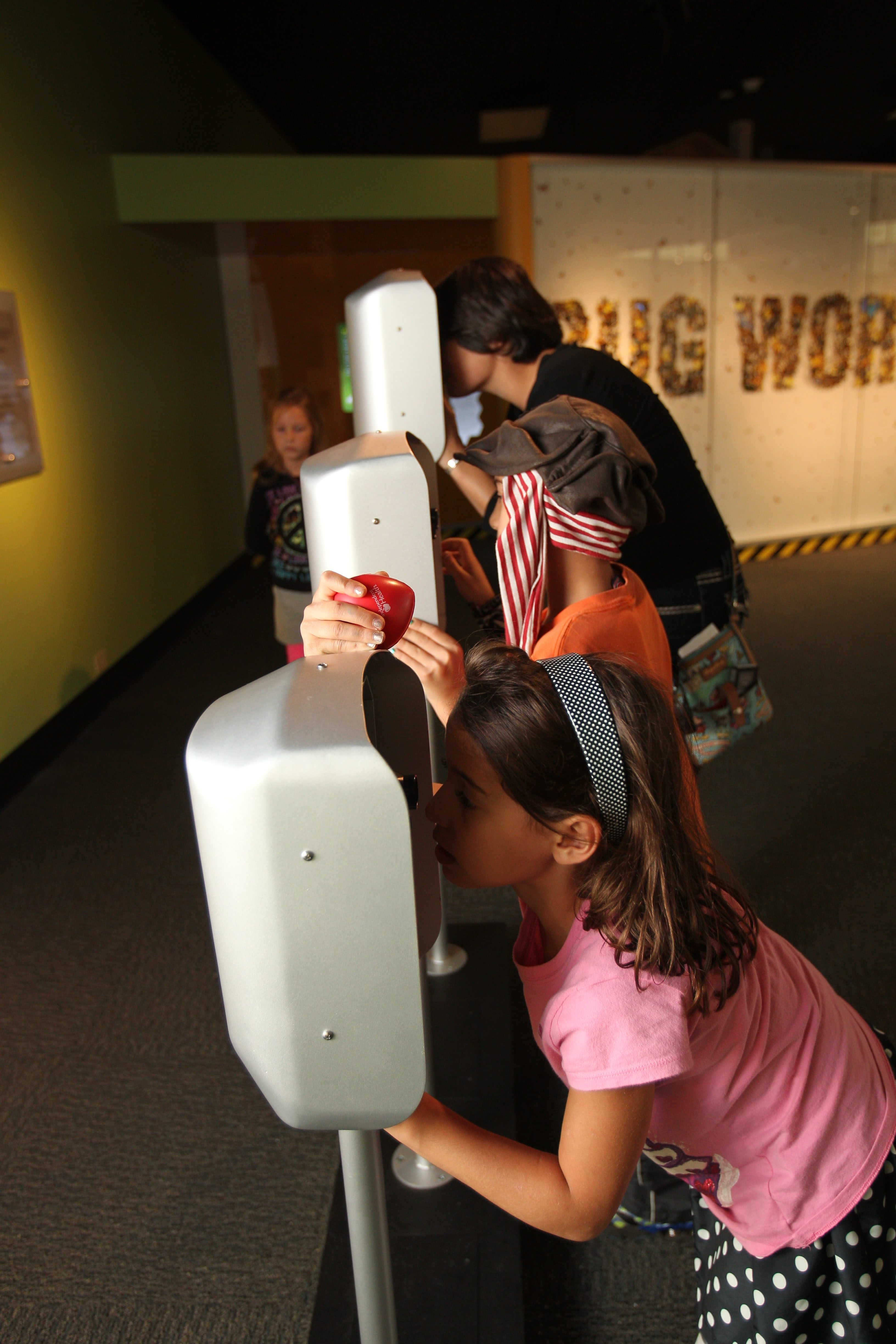 The Buffalo Museum of Science will host a Community Health Day with free admission from 10 a.m. to 4 p.m. Monday. (Sharon Cantillon/Buffalo News)