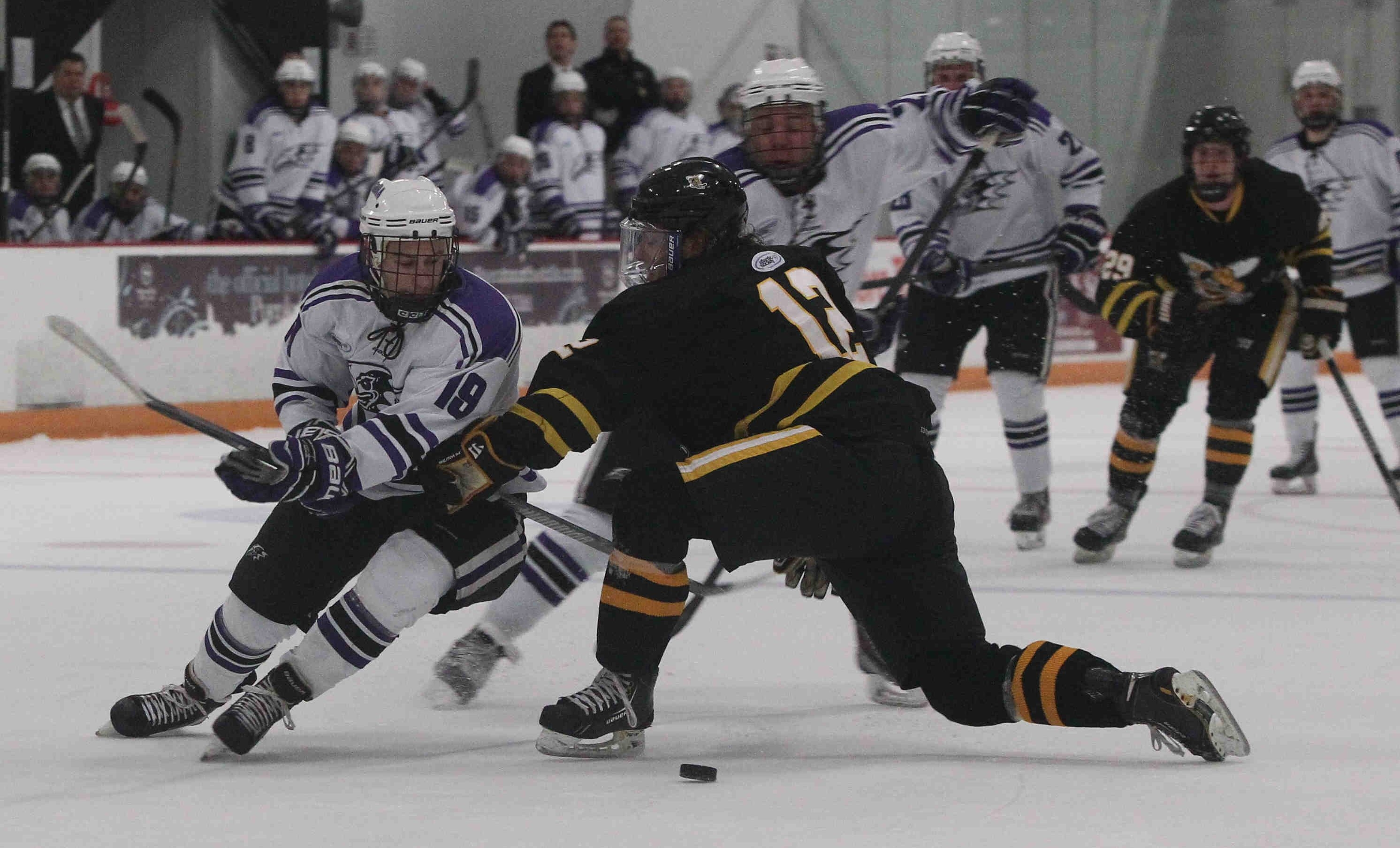 Niagara's Phil Nasca, left, looks to work around AIC's Nick Campanale during first-period action at Dwyer Arena.
