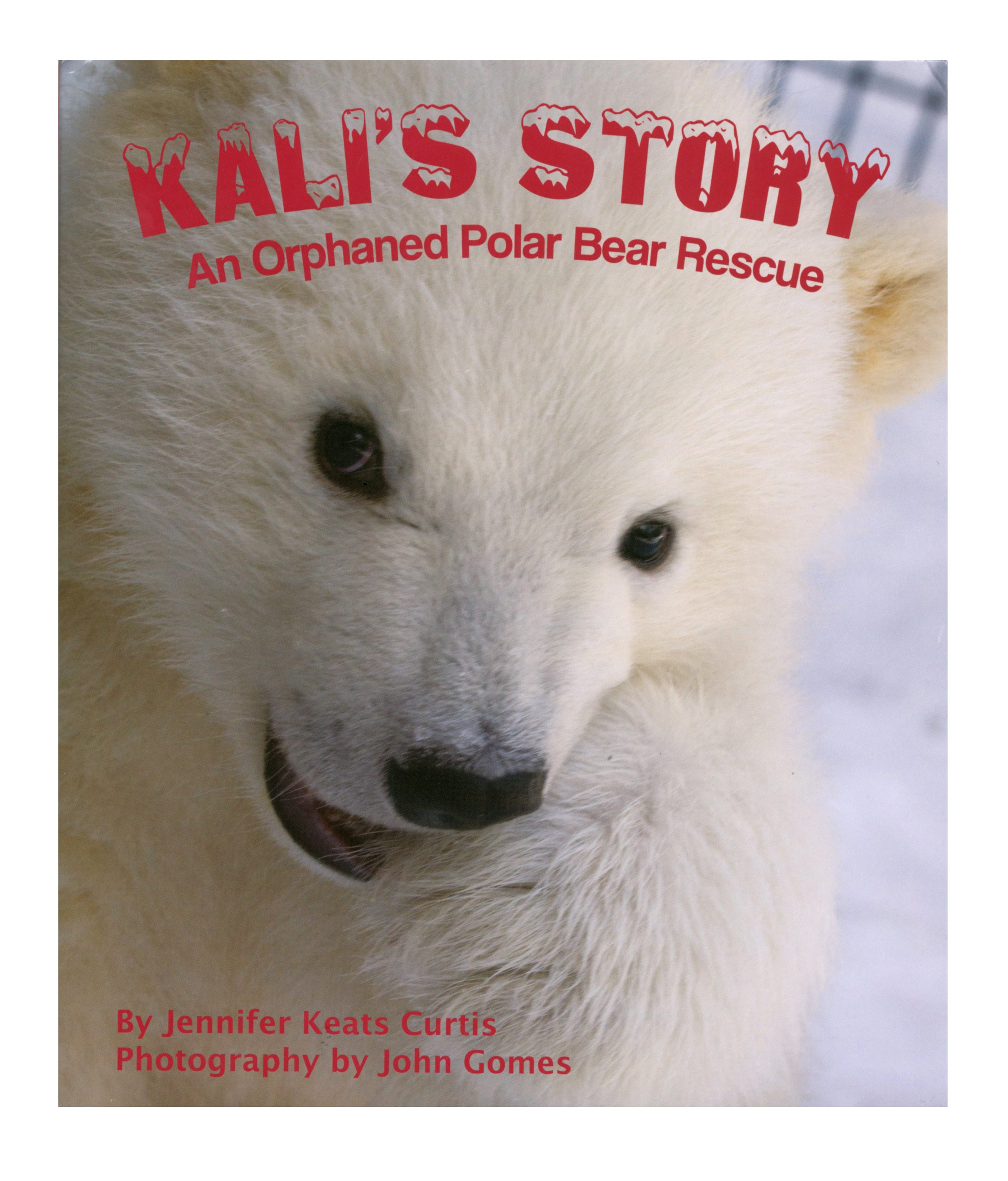 The book's cover features a close-up of Kali's face.