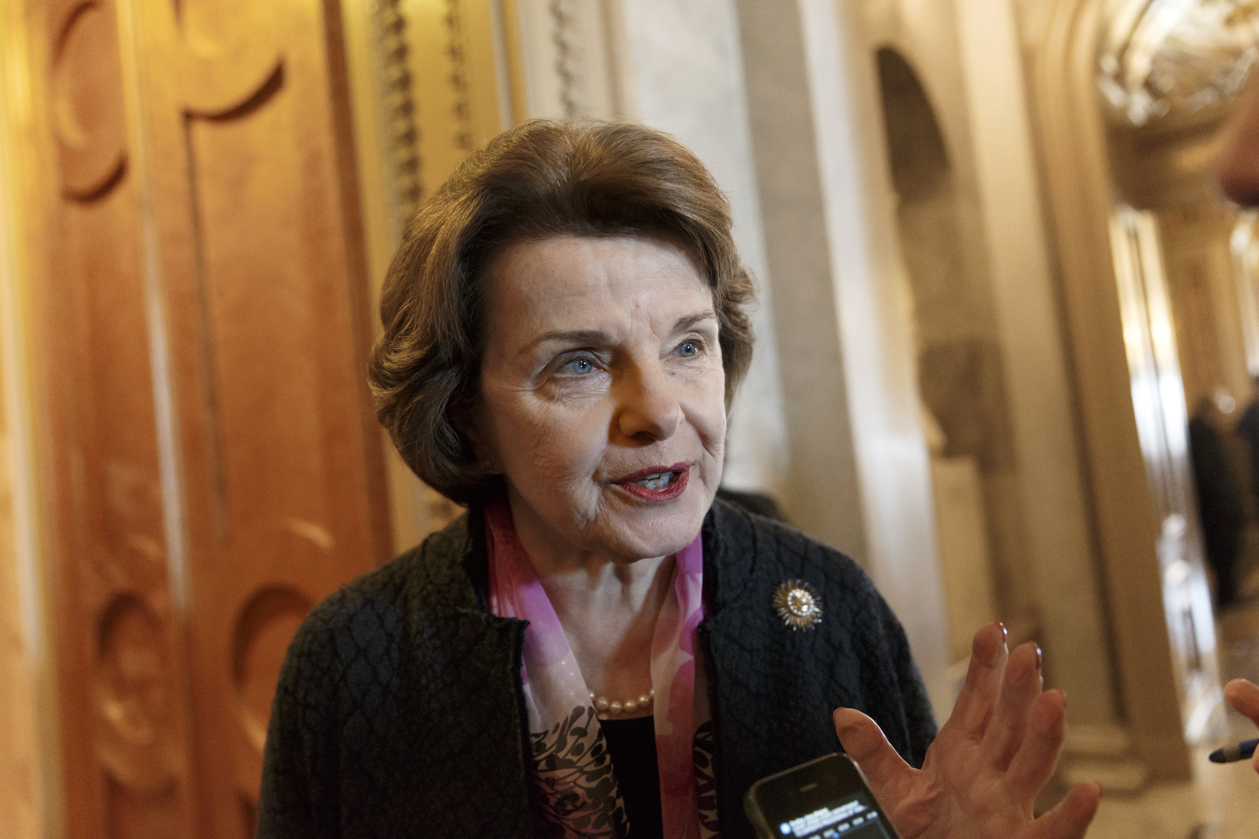 Senate Intelligence Committee Chairwoman Dianne Feinstein, in her most detailed response to an Obama administration plan to constrain NSA phone surveillance, offers support, but with significant caveats.