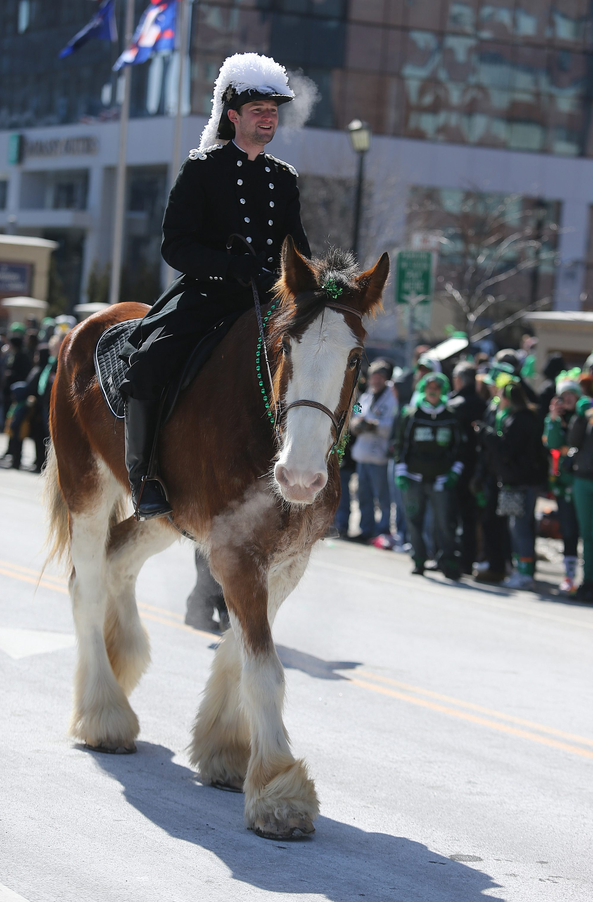 Josh Burkhardt and his horse, Jenna, are part of the Knights of St. John unit marching during the annual St. Patrick's Day Parade on Sunday. See a photo gallery at Buffalonews.com.