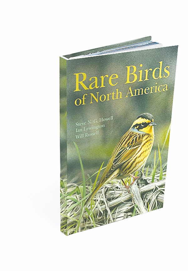 """Rare Birds of North America"" describes 262 avian species commonly called vagrants."