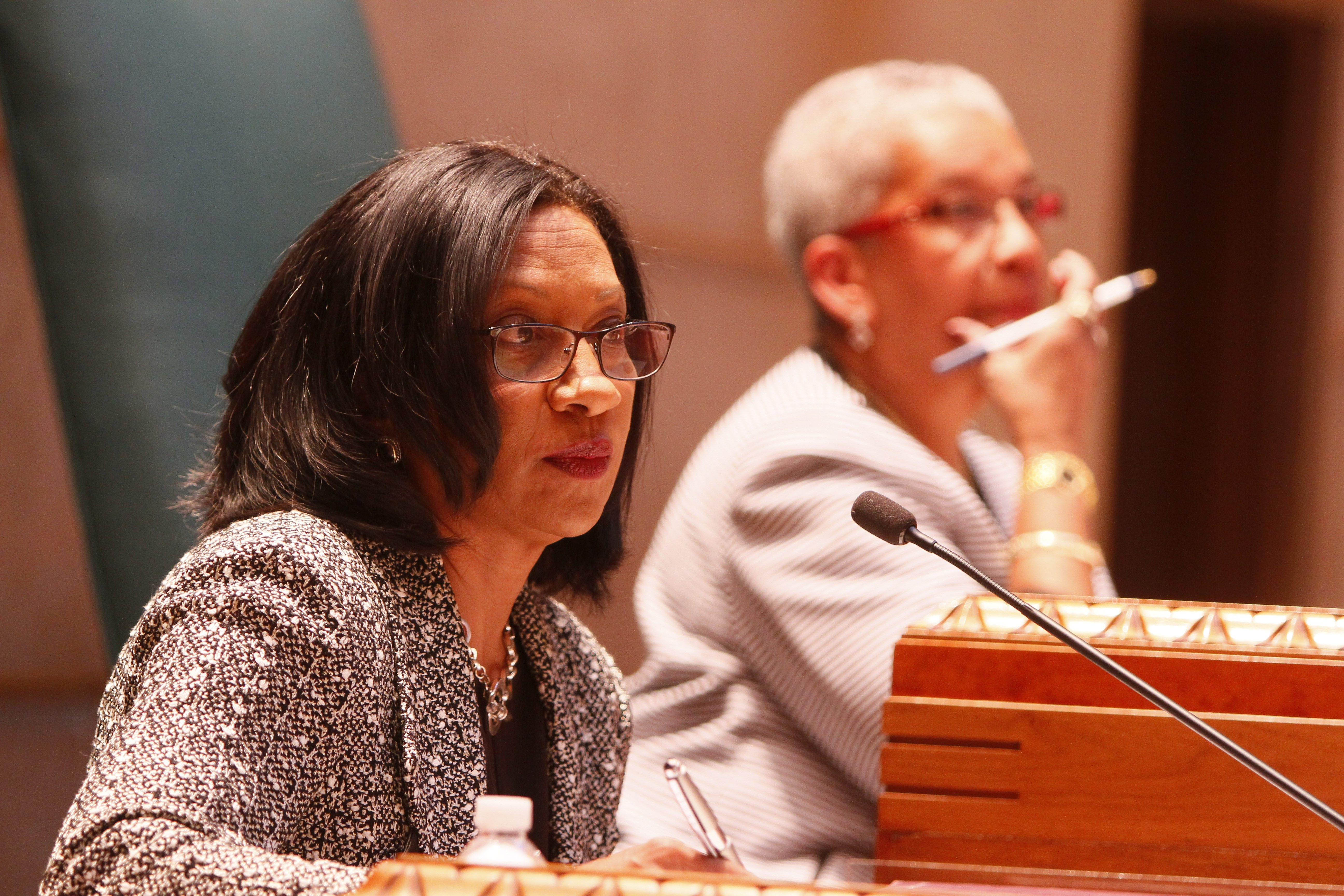 Members of the Buffalo School Board should refrain from taking significant actions until after the May elections for School Board determine the fate of Superintendent Pamela C. Brown.