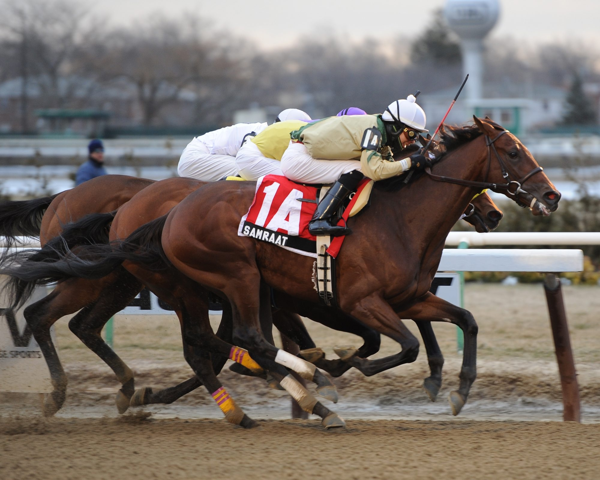 A win in today's Wood Memorial Stakes at Aqueduct would help propel Samraat toward contending in the Kentucky Derby on May 3.