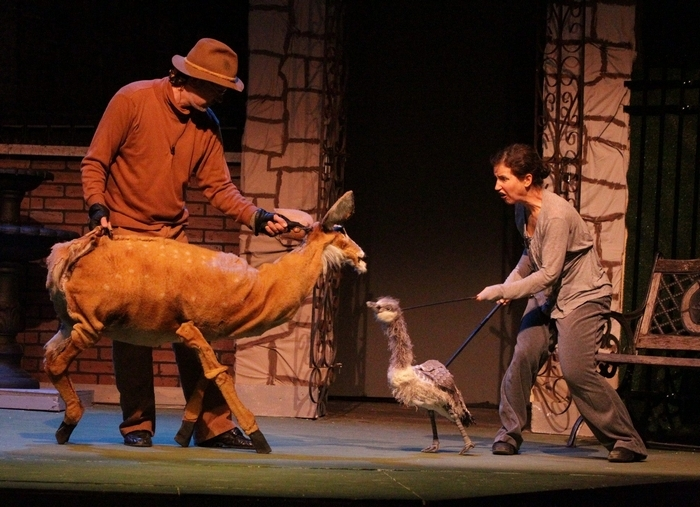 """Puppeteers Michele Costa and Franklin Lavoie rehears their scenes in the play """"Buffalo Moon"""" today at the New Phoenix Theatre in Buffalo,NY on Monday, March 17, 2014.  (James P. McCoy/ Buffalo News)"""