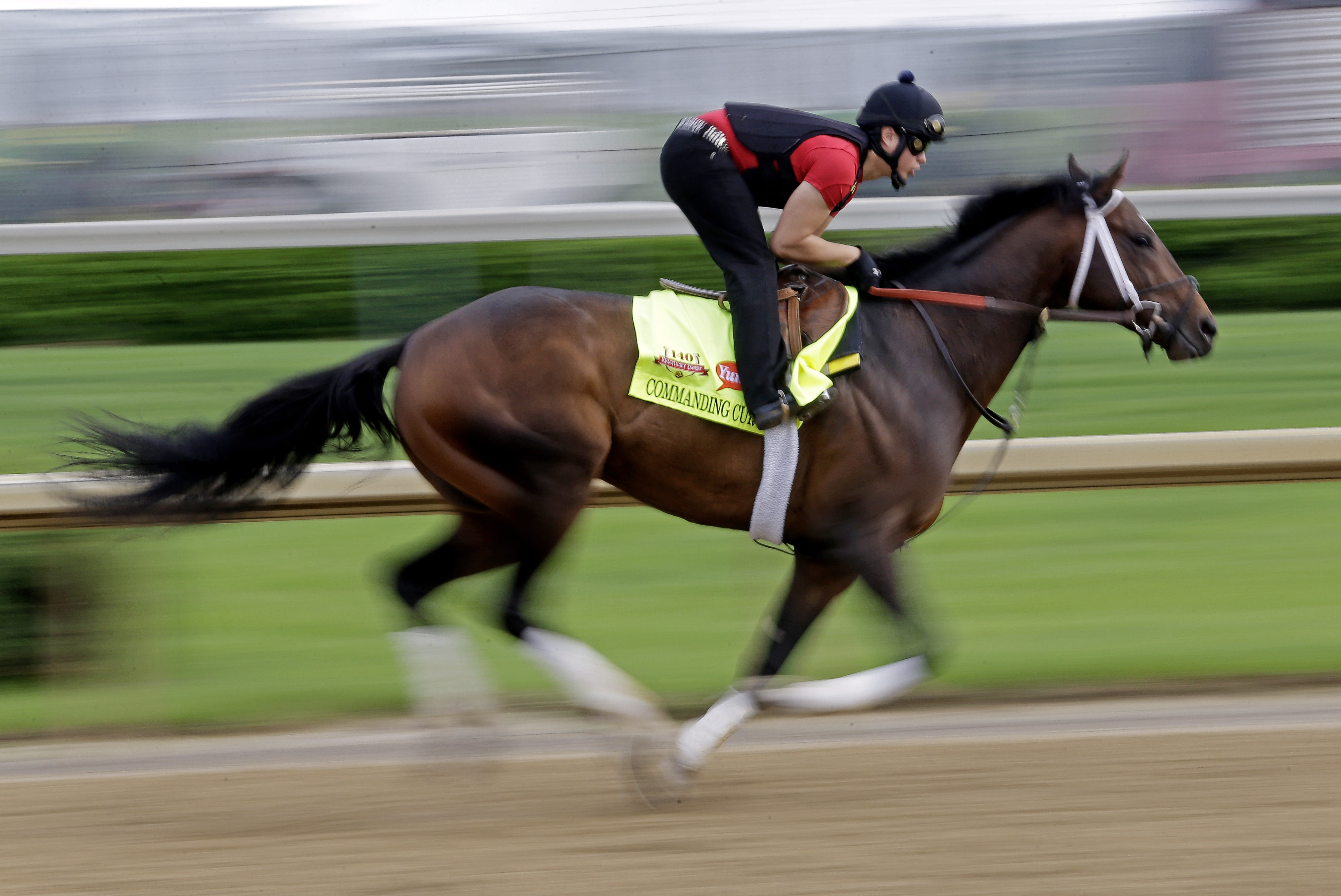 Commanding Curve finished second in the Kentucky Derby to California Chrome and is a son of former Belmont champion A.P. Indy.
