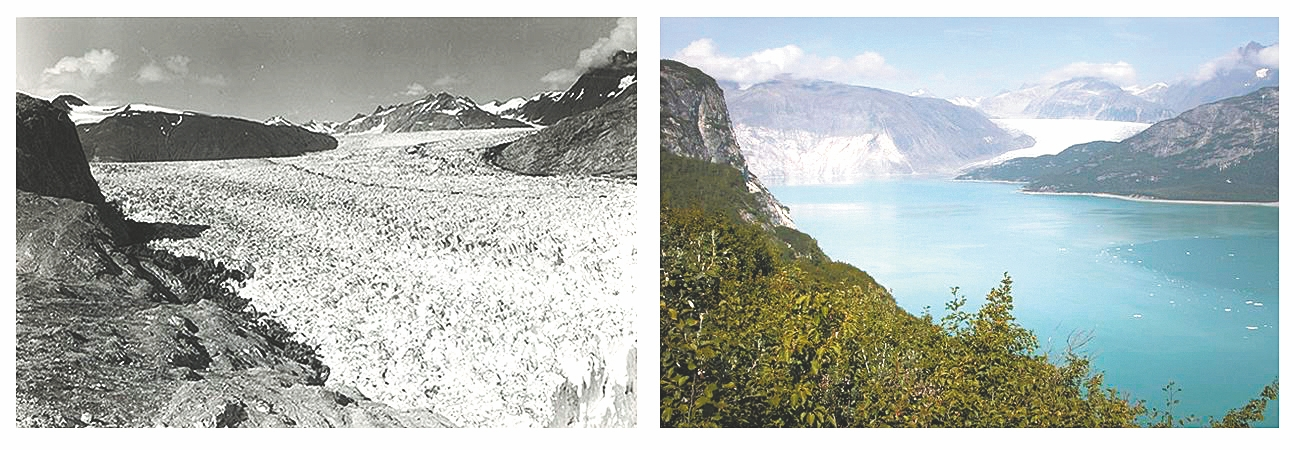 The Muir Glacier in Glacier Bay National Park in Alaska in August 1941, left, and August 2004.