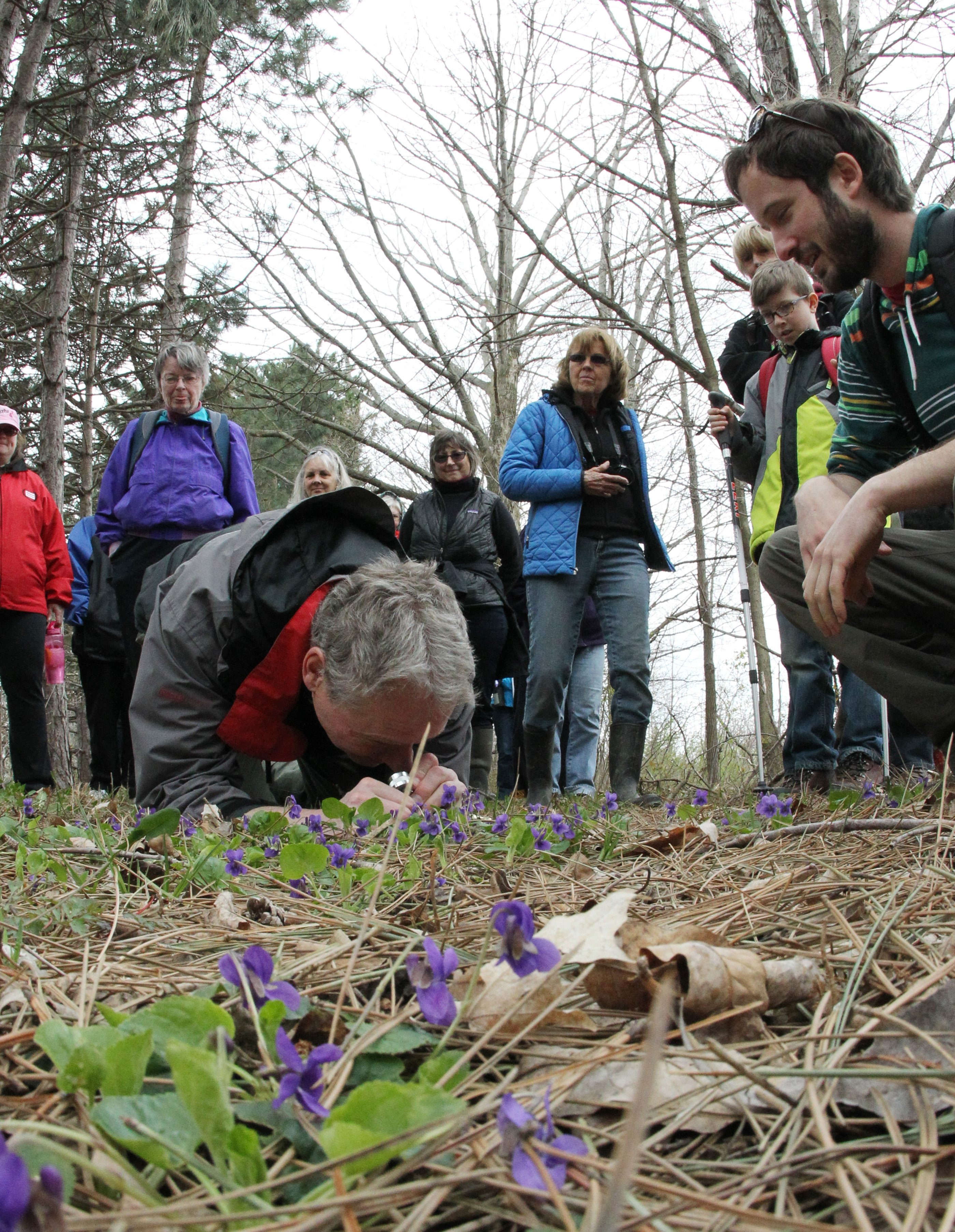 Edward Fuchs, left foreground, and Matt Candeias are among nature group members getting a close look at vari- ous flora at Niagara Escarpment Preserve in Lockport.