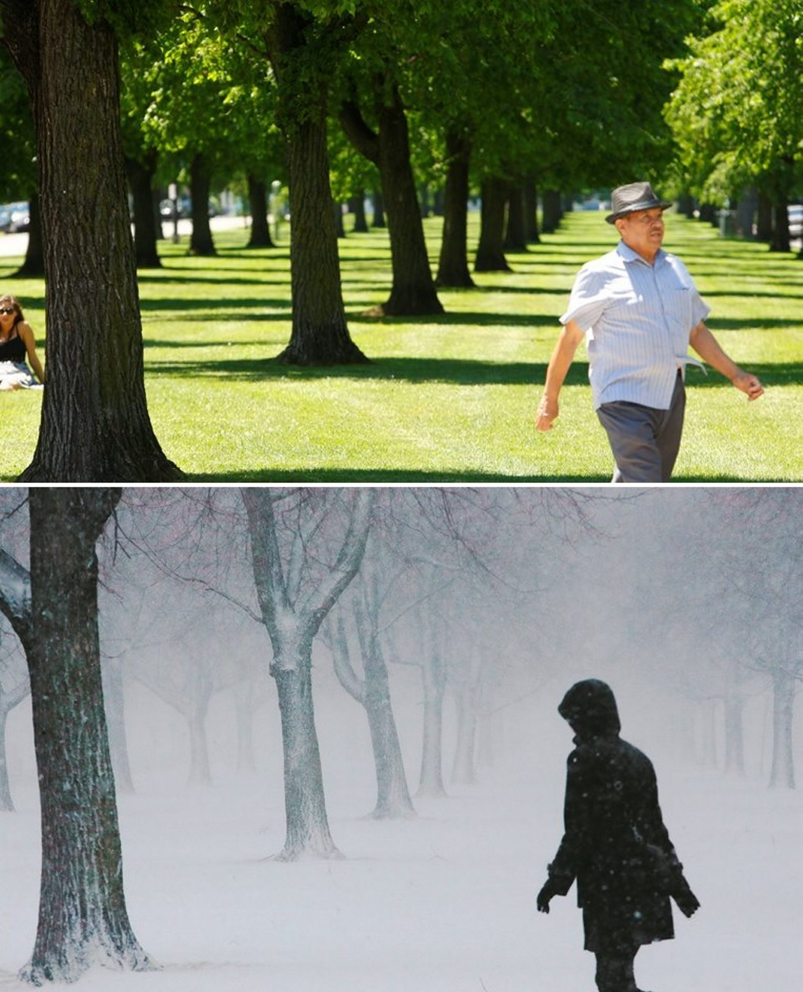 Summer, winter views of the same spot on Bidwell Parkway. (Derek Gee / Buffalo News)