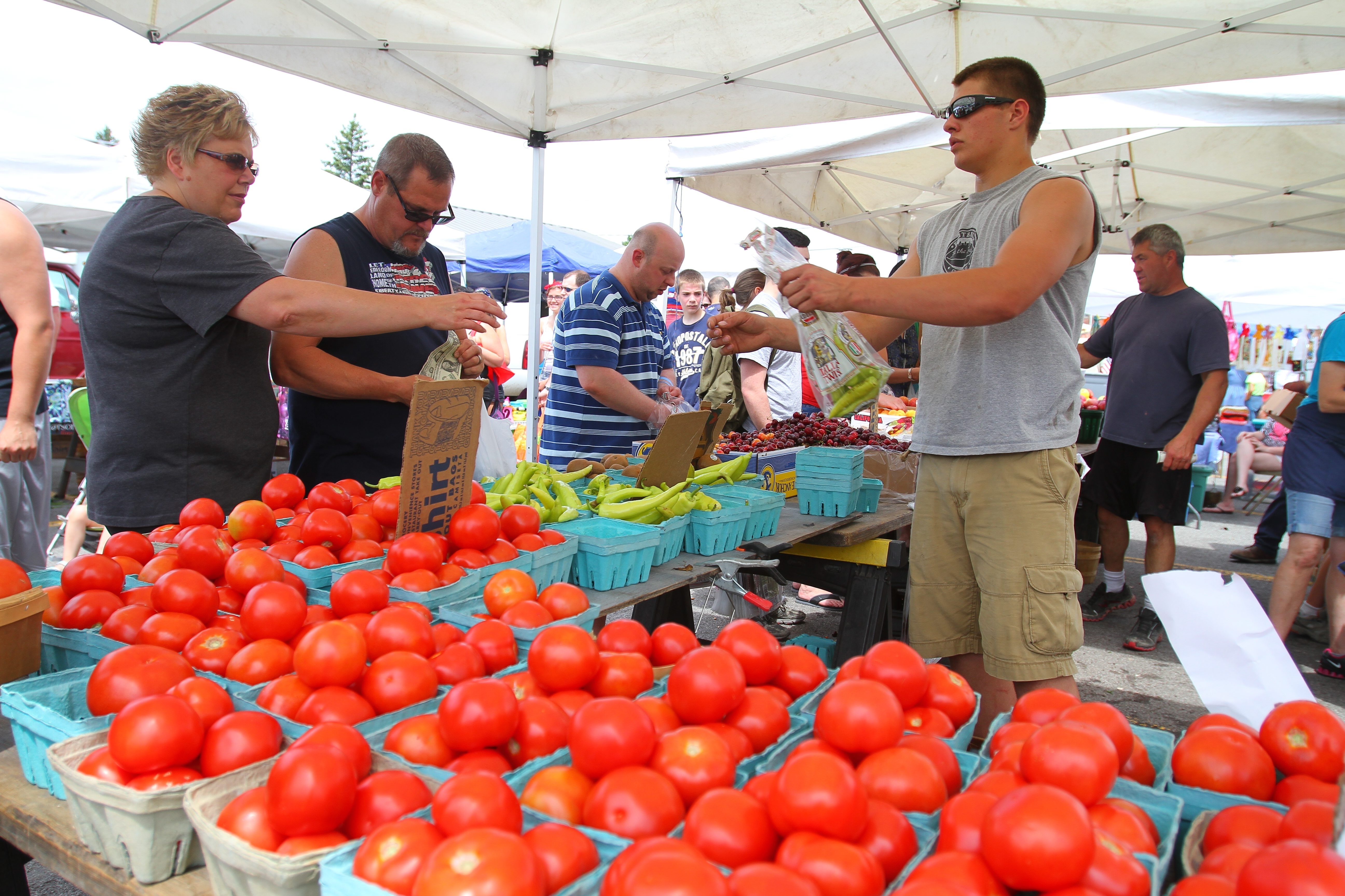 Homegrown tomatoes will soon be available at local farmers' markets.