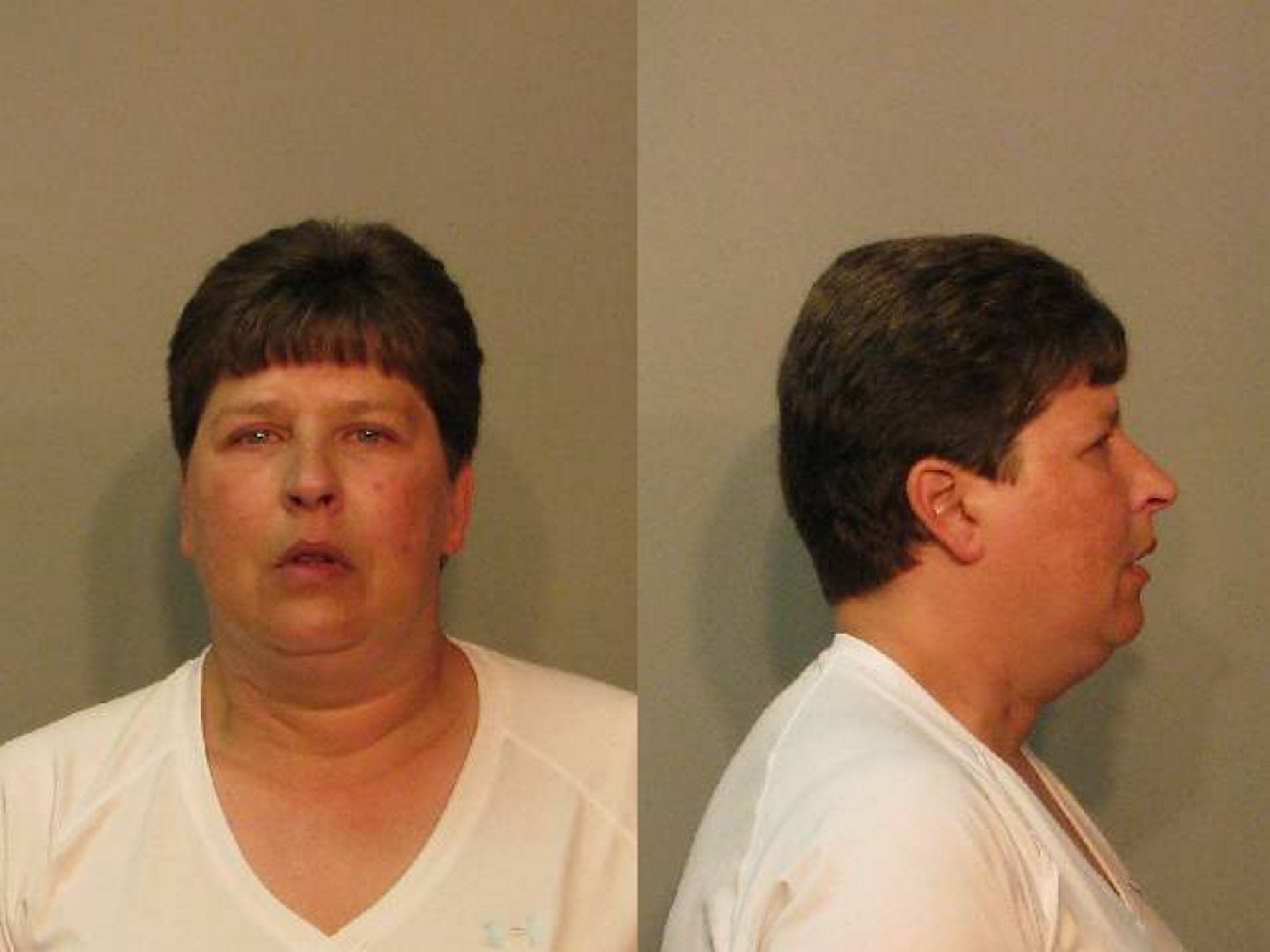 Michelle L. Johnston, 41, the suspect in 11 arson fires  that have plagued a  North Tonawanda neighborhood.