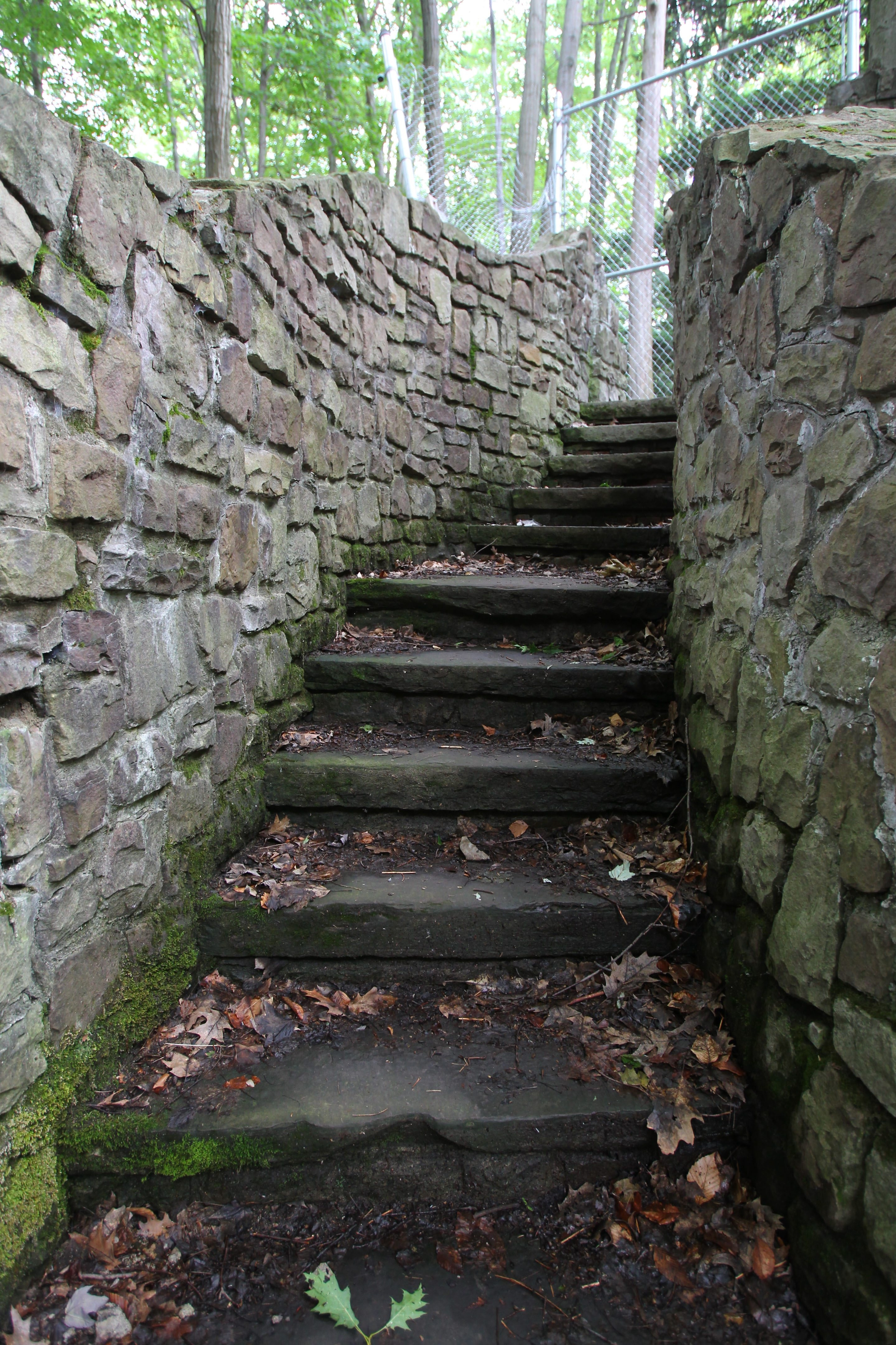 The conservancy's most expensive project at Chestnut Ridge Park is repairing the 100 steps for approximately $2 million.