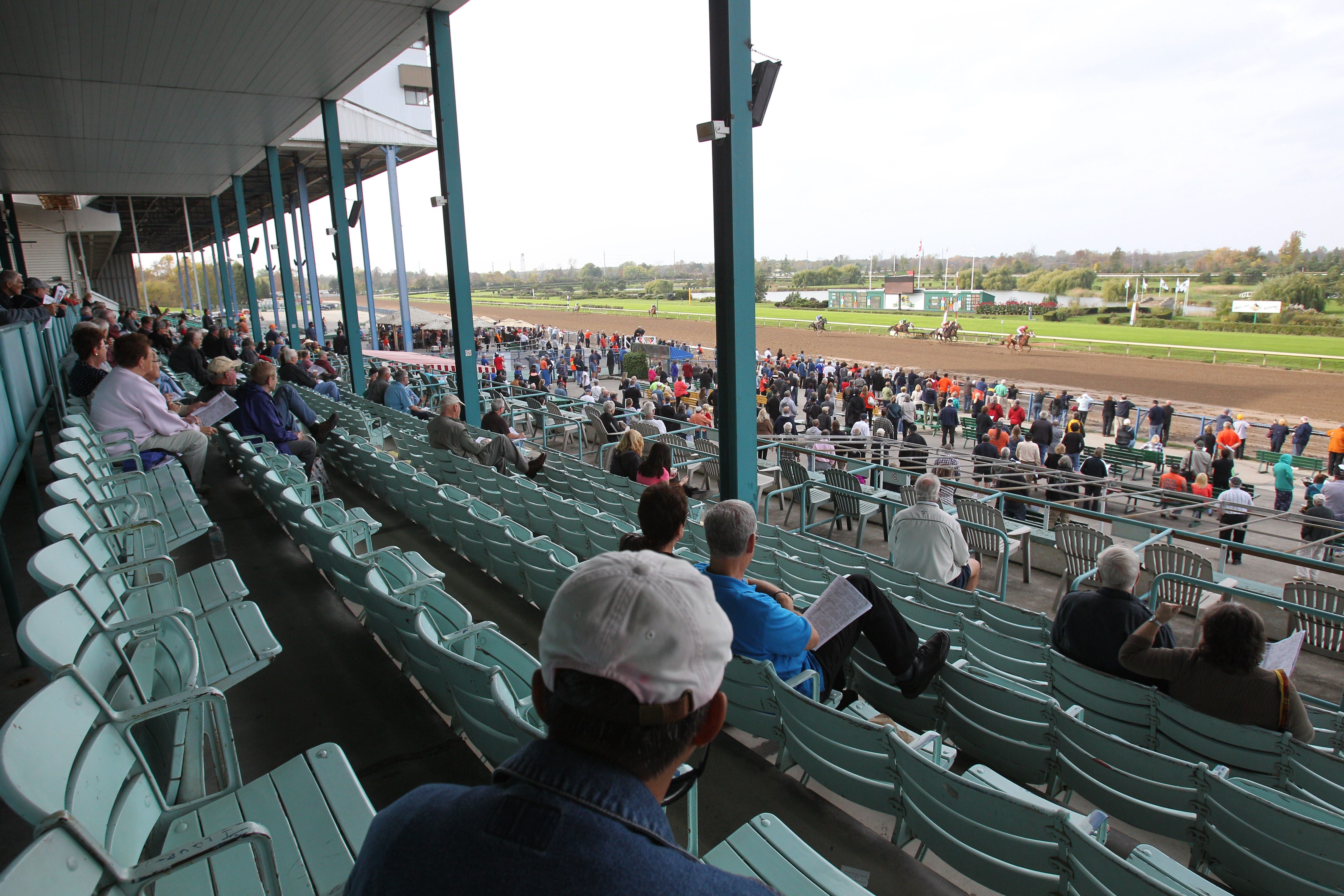 Bettors watch as the horses approach the finish line on Oct. 15, 2013, the last day of the season and, for all the patrons knew at the time, the last day of the race track.