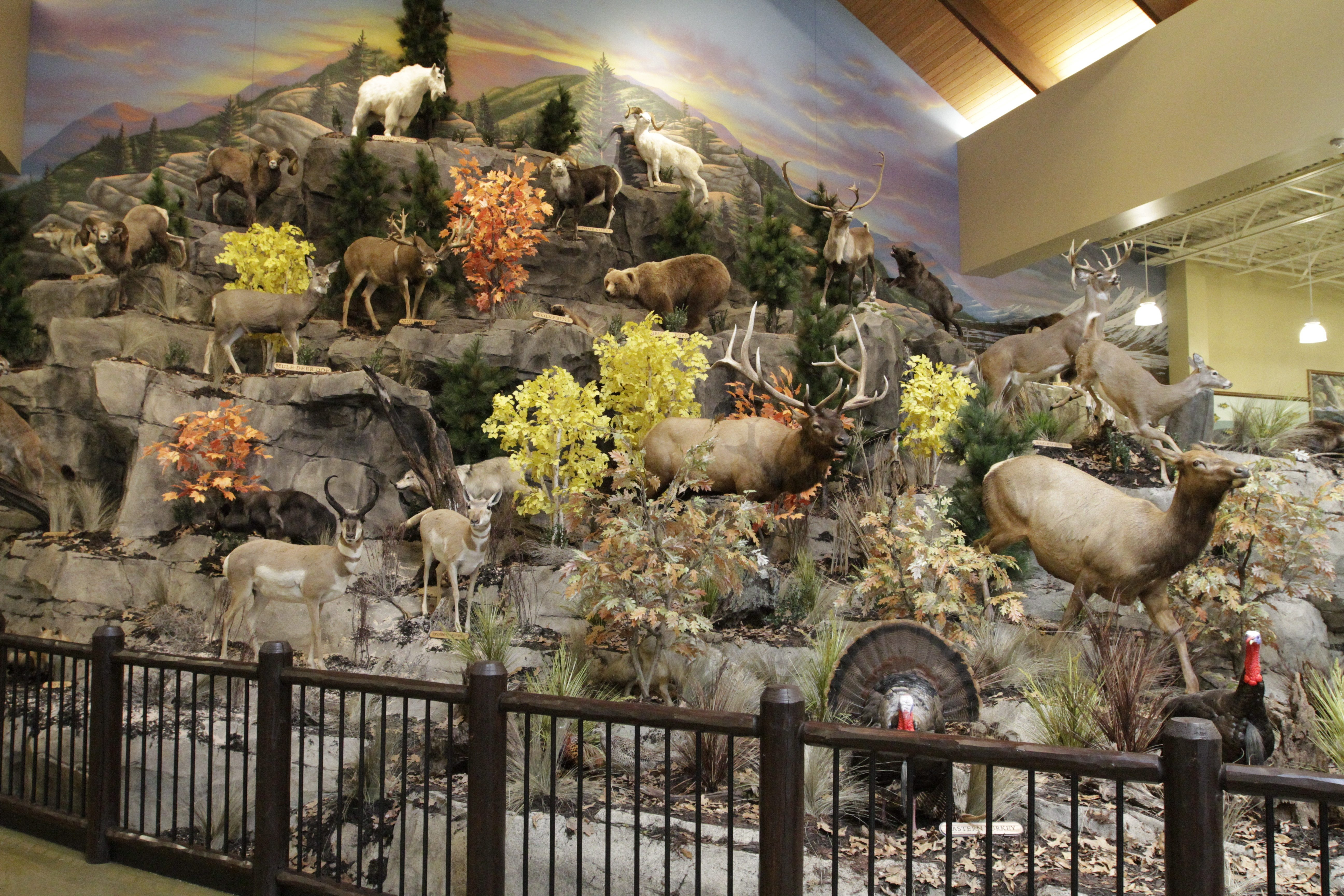 A mountain of wildlife in a taxidermy display on a sneak preview Wednesday of the new Cabela's store.