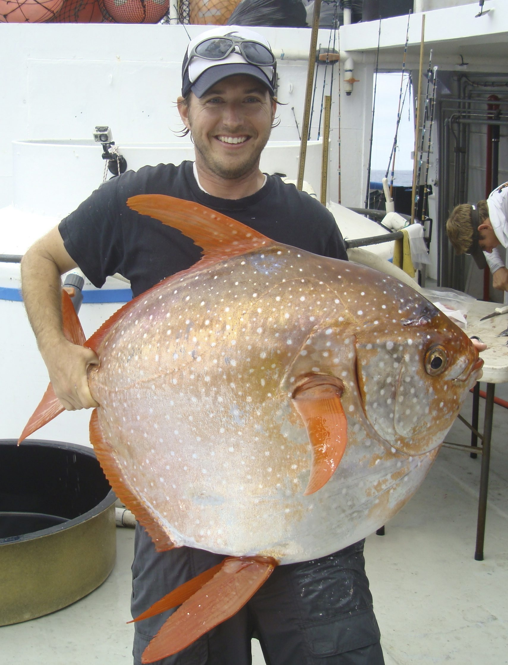 Biologist Nick Wegner holds an opah, caught during a fishing survey. It is the only fish that warms its heart by rapidly flapping its pectoral fins.