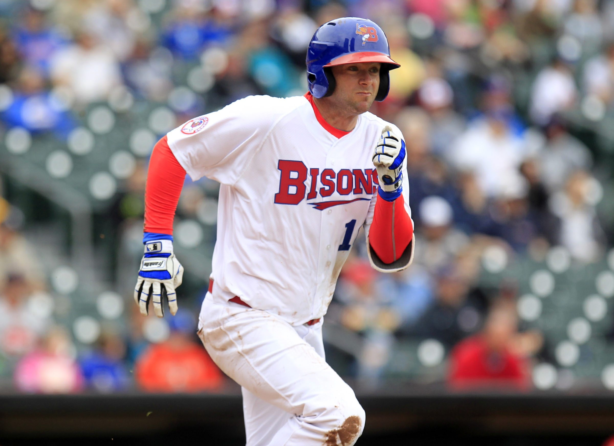 Matt Hague and the Bisons have a homestand that features Durham and Toledo.