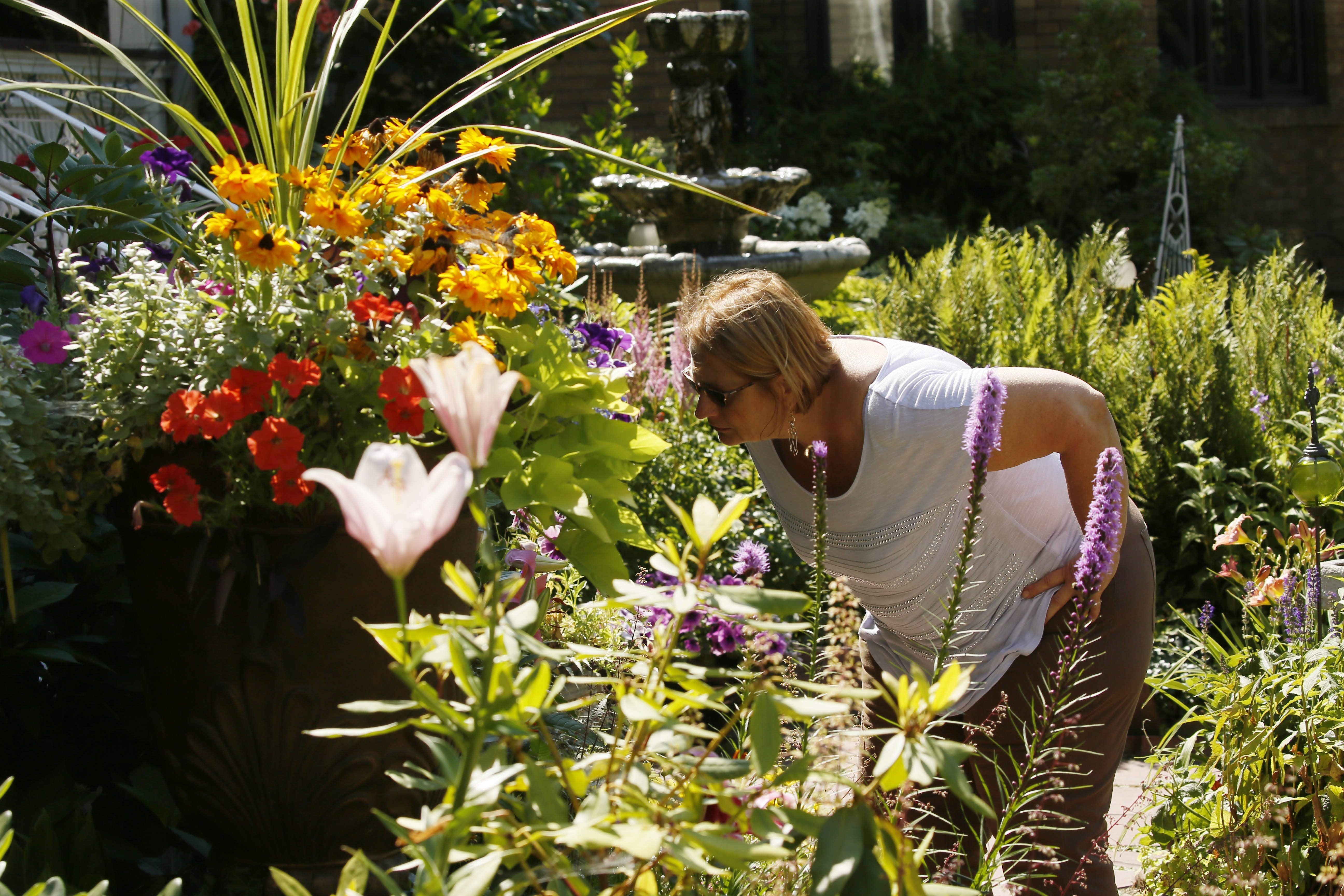 Donna Kleinmann of Hamburg pauses to catch a scent and get a closer look at the beautiful blooms in Jennifer and Jim Guercio's garden on West Delavan Avenue. The walk features seven areas and neighborhoods that visitors may stroll through.