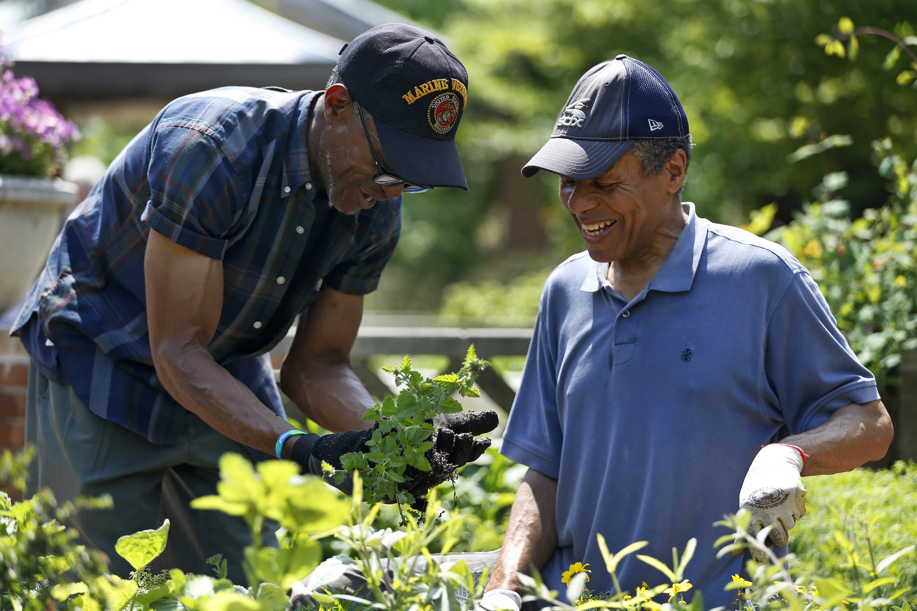 Veterans Henry John Henry, 62, left, and Jaffery Hart, 60, plant in the Chicago Botanic Garden through Thresholds, a therapy program for those who have served.