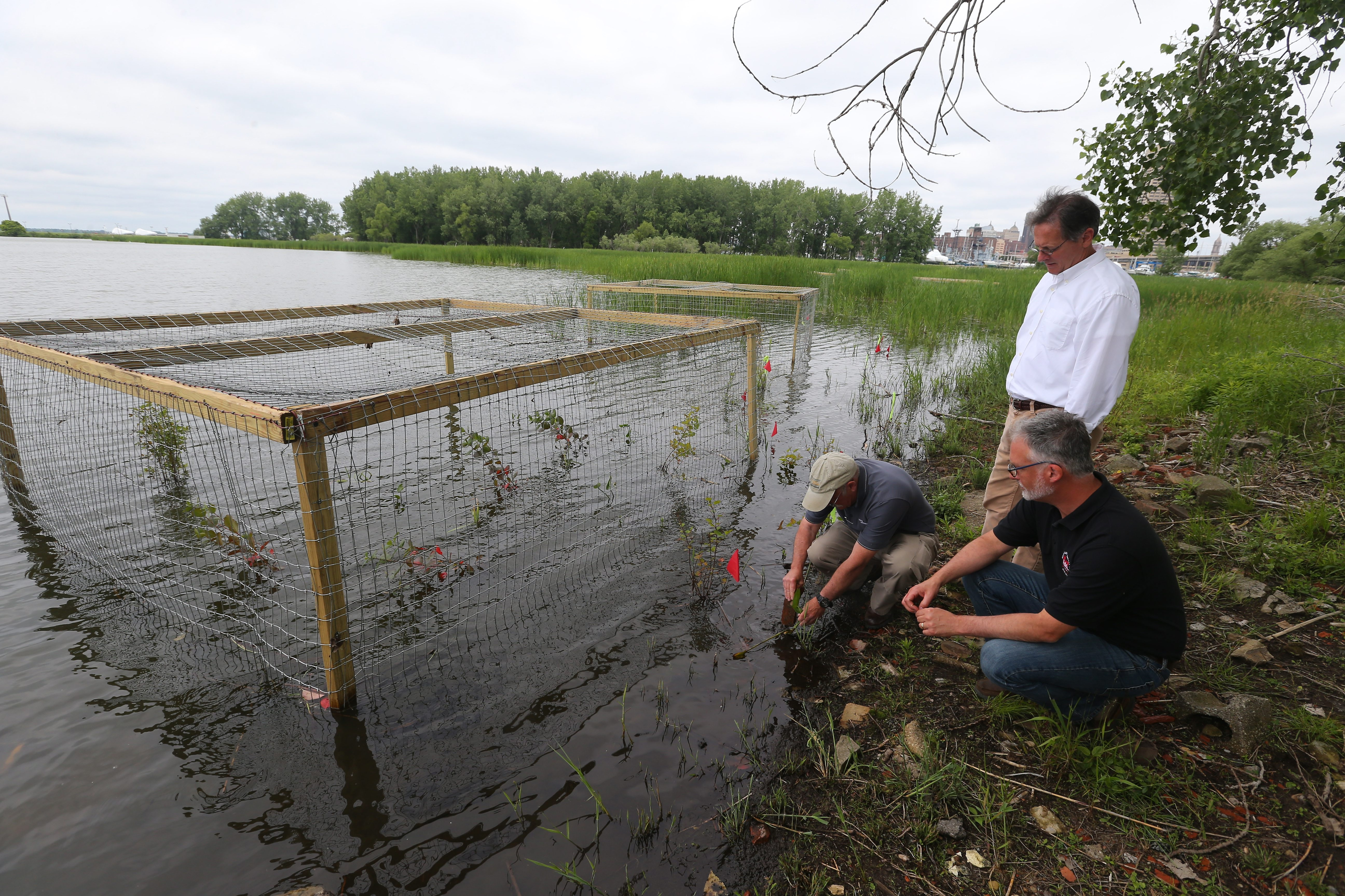 Paul Fuhrmann, left, and Kris Erickson, center, of Ecology and Environment, Inc., work with Craig Forgette, right, of the U.S. Army Corps of Engineers to check on the plants they have placed at Times Beach Nature Preserve. The preserve is serving as a model for other states.